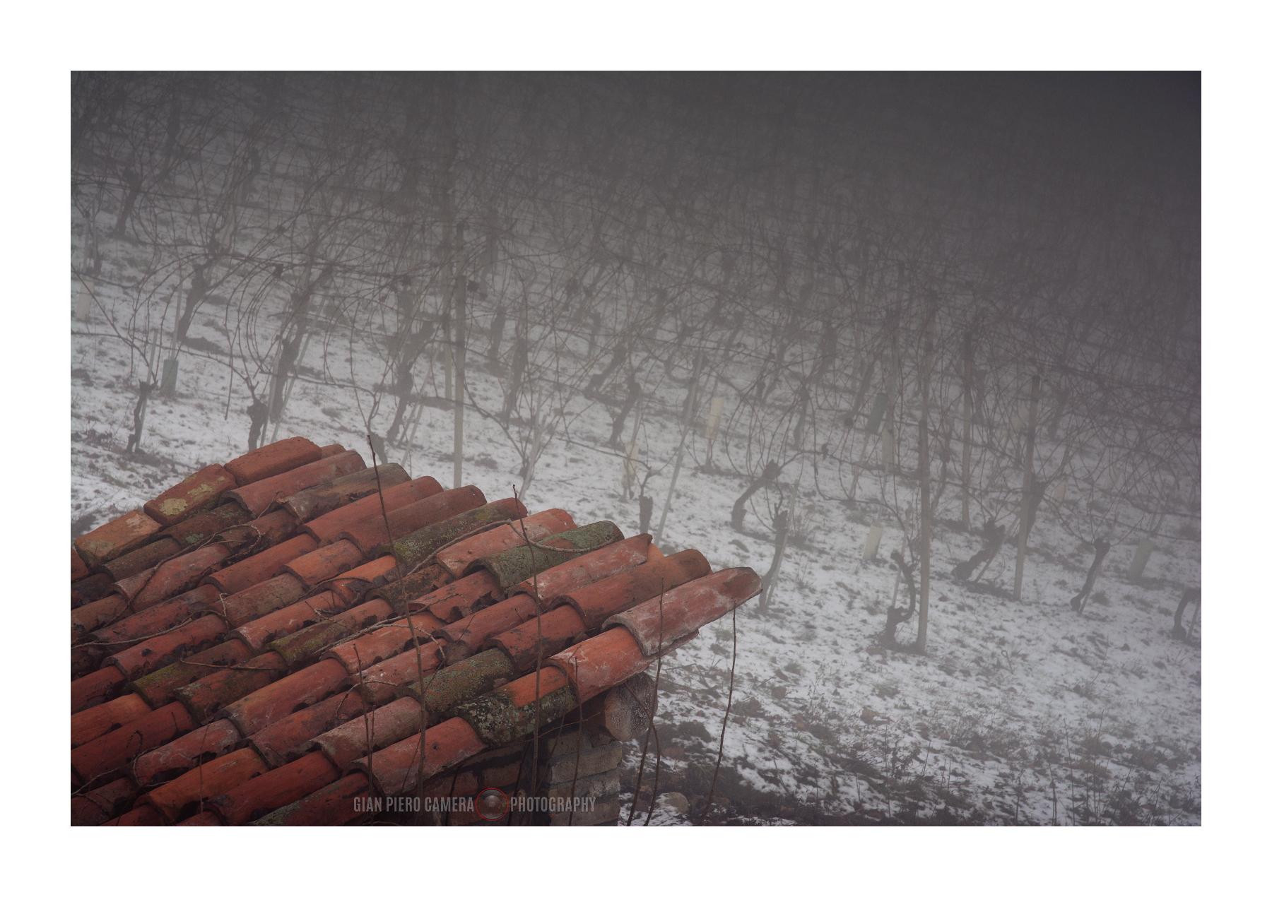 Sfondi nikond sigma contemporary rosso grigio tetto