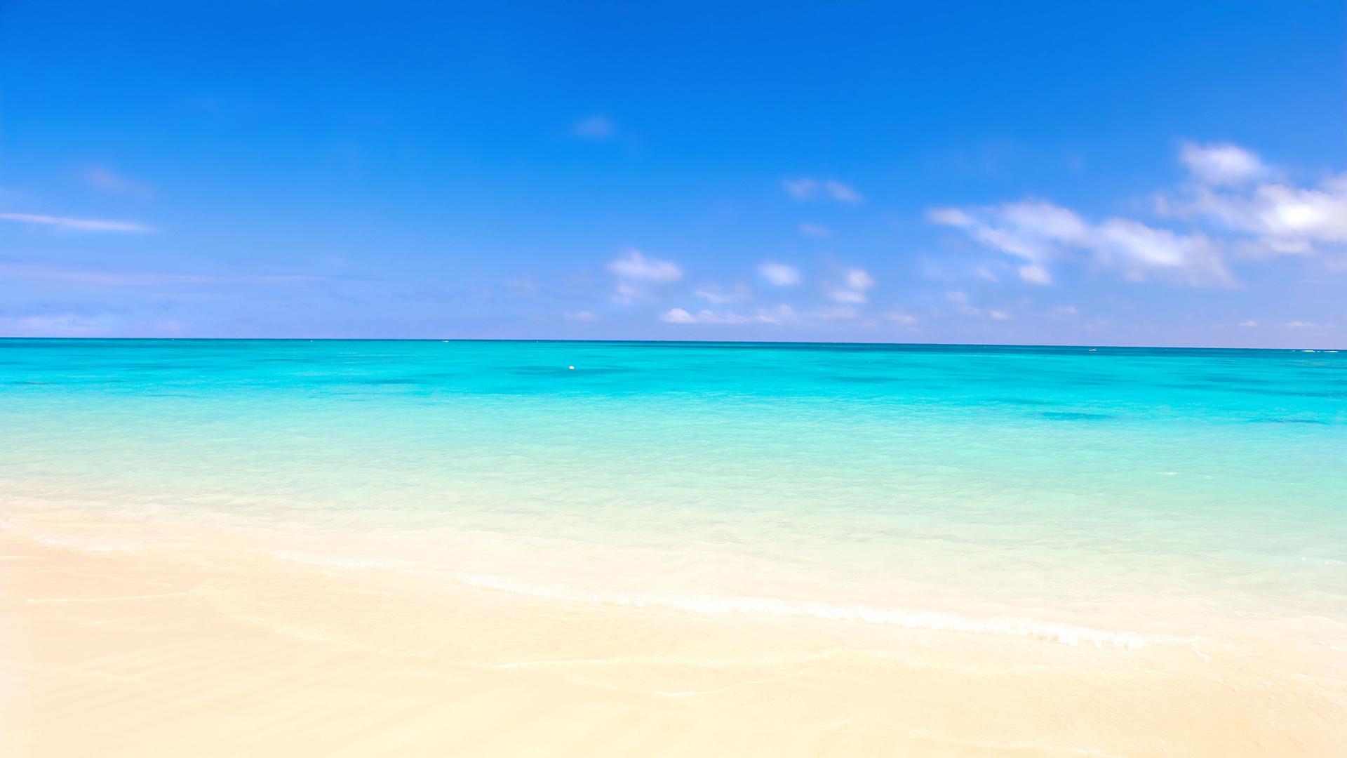 ocean sand beach