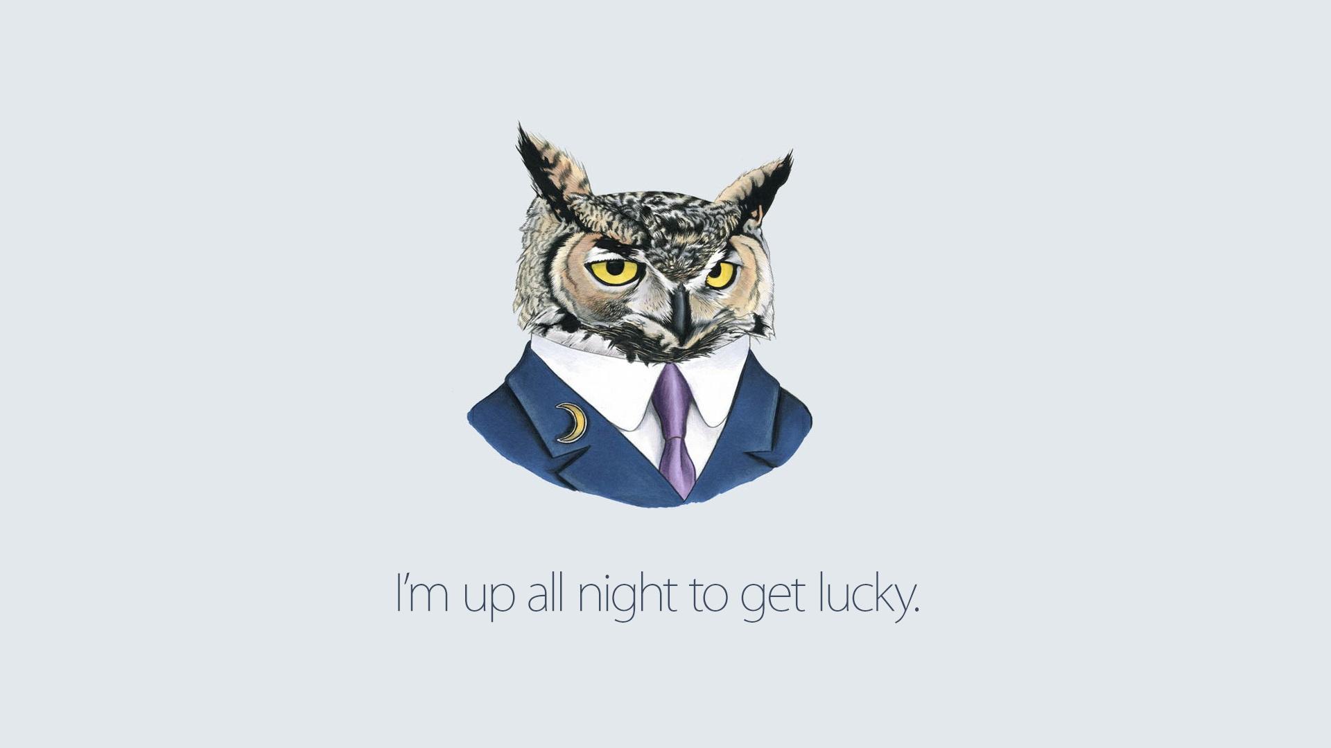 Wallpaper Owl ART Inspiration 1920x1080