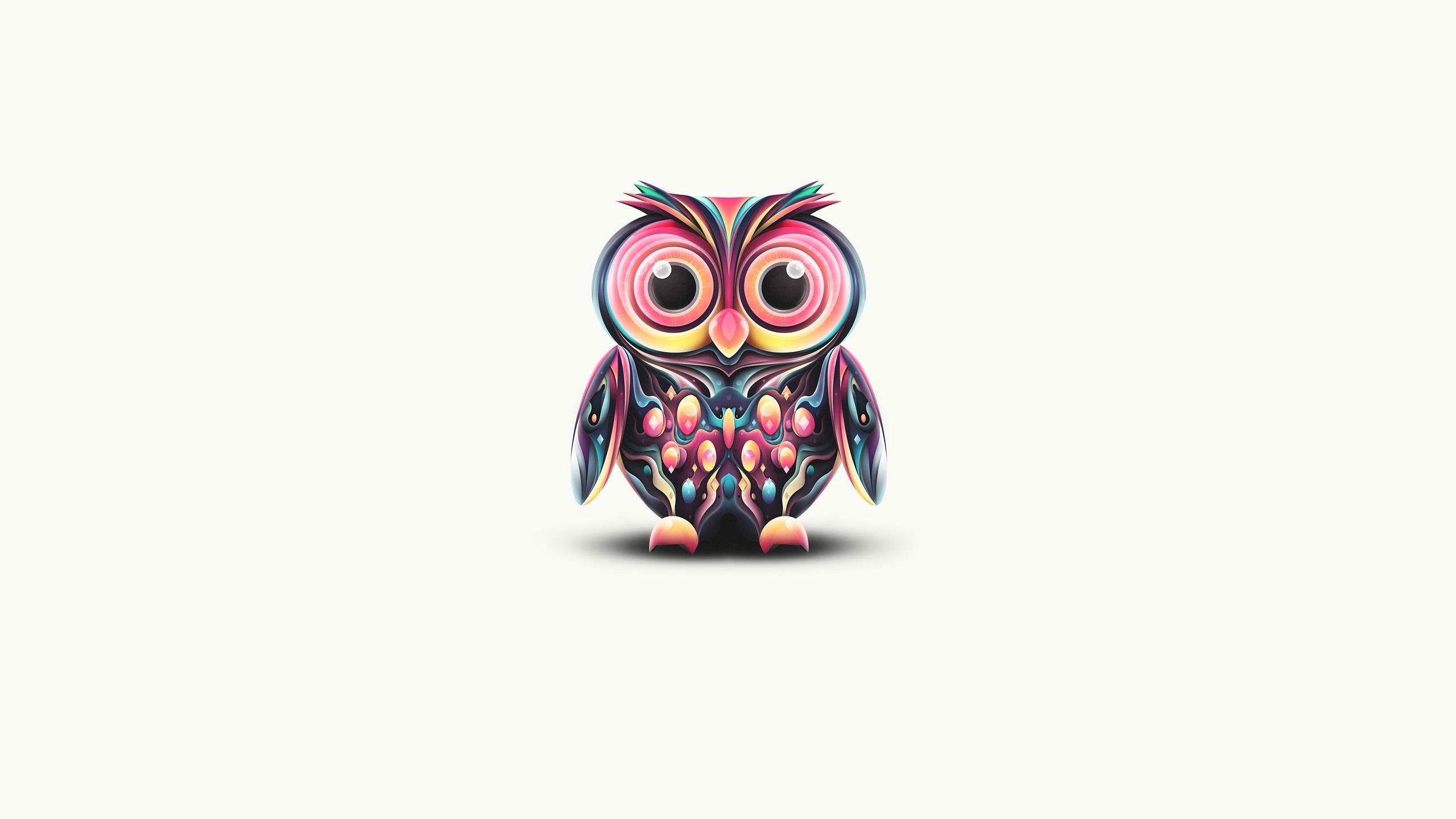foto de Fondos de pantalla : búho, dibujo, pájaro, plumas 2560x1440 ...