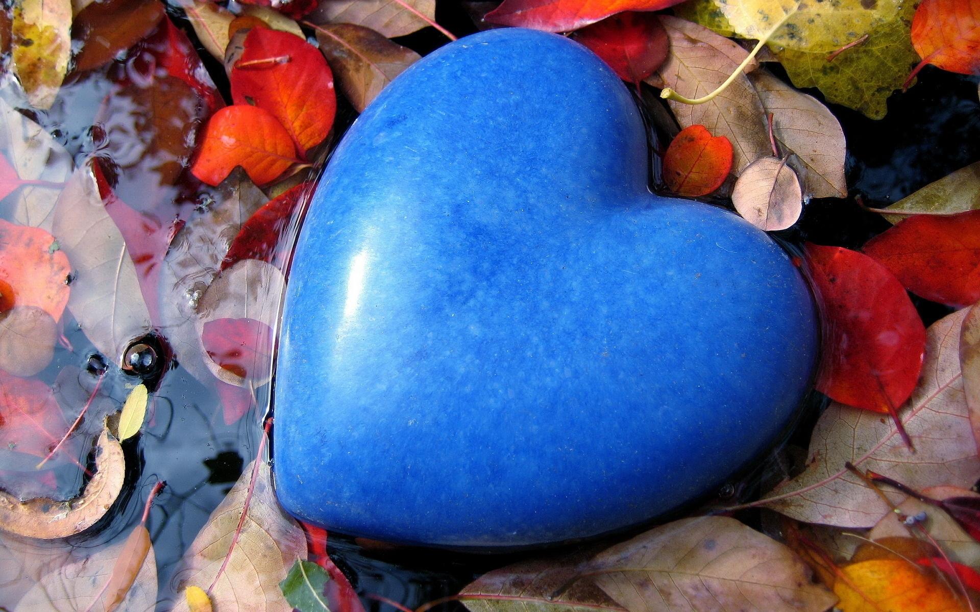 Masaustu Boyama Yapraklar Gida Kalp Mavi Bahar Renk