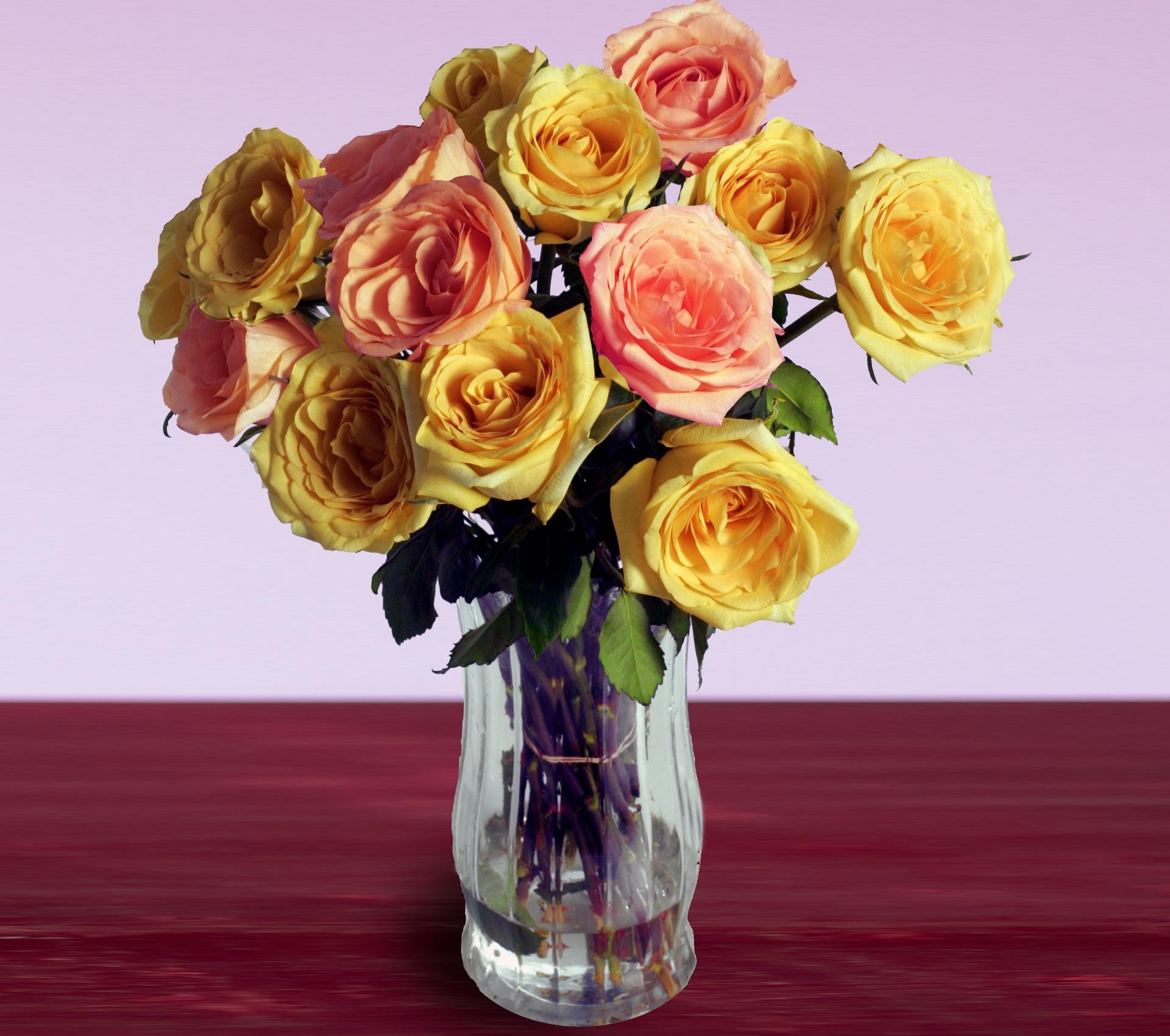 фото, разная цветы розы фото в вазе болотистых