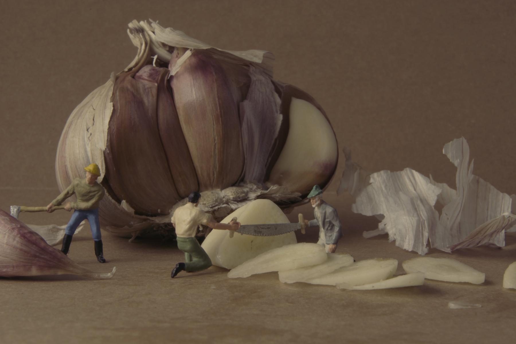 Hintergrundbilder : Malerei, Weiß, Lebensmittel, Spielzeug, Modell ...