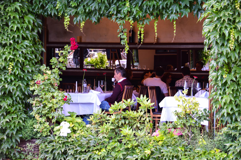 Fondos de pantalla : gente, Flores, Botellas, gafas, reflexión, mesa ...