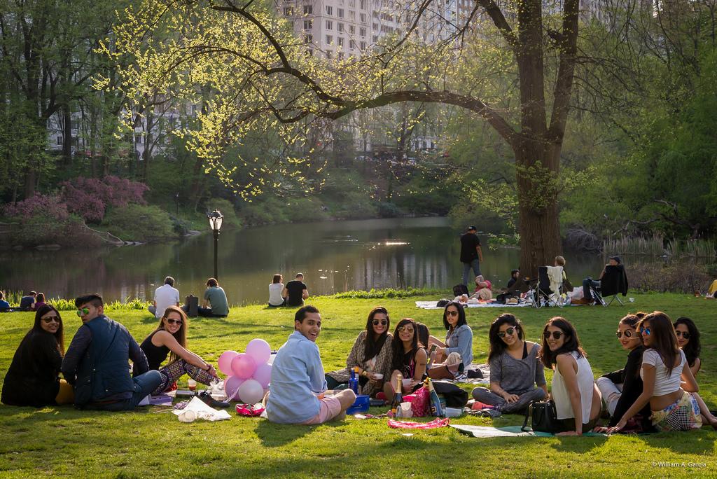какой фото людей в парке отличие большинства других