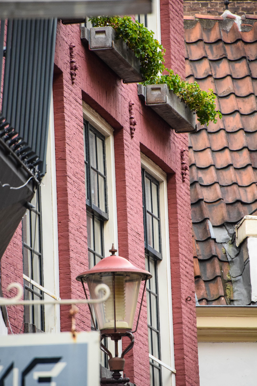 Baggrunde : mennesker, vindue, gade, arkitektur, bygning, væg, vej ...