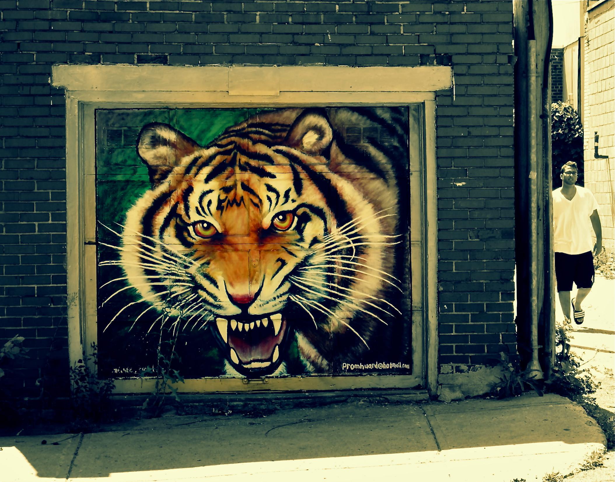 картинки на стену тигр помощью