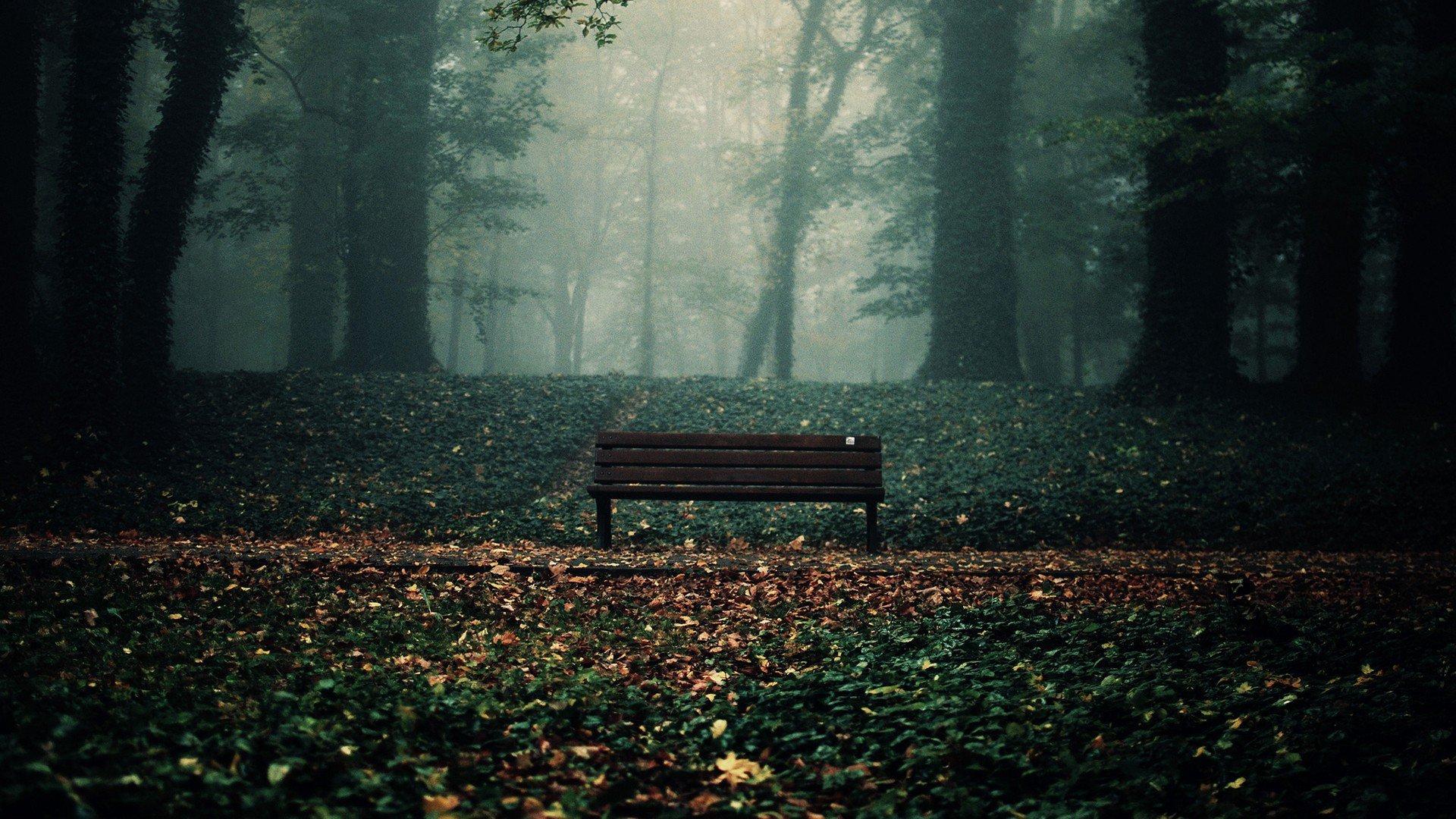 дыхательных места для грустных картинка нравится радость удивление