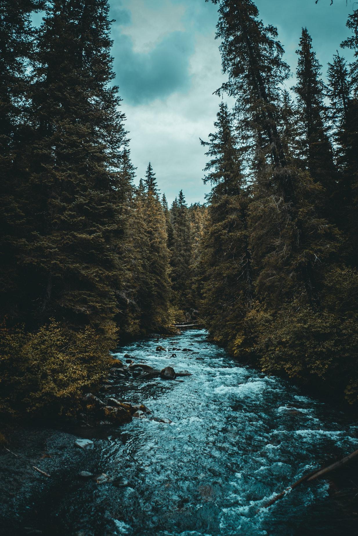картинки природа красивые для айфона что удивляйтесь если