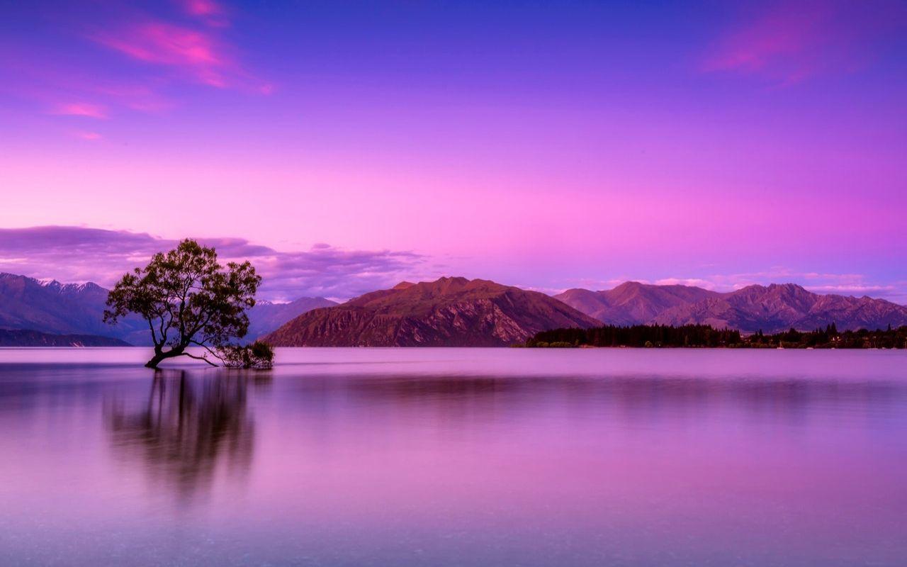 Fondos De Pantalla Pink Lake View Amazing Pink Nature
