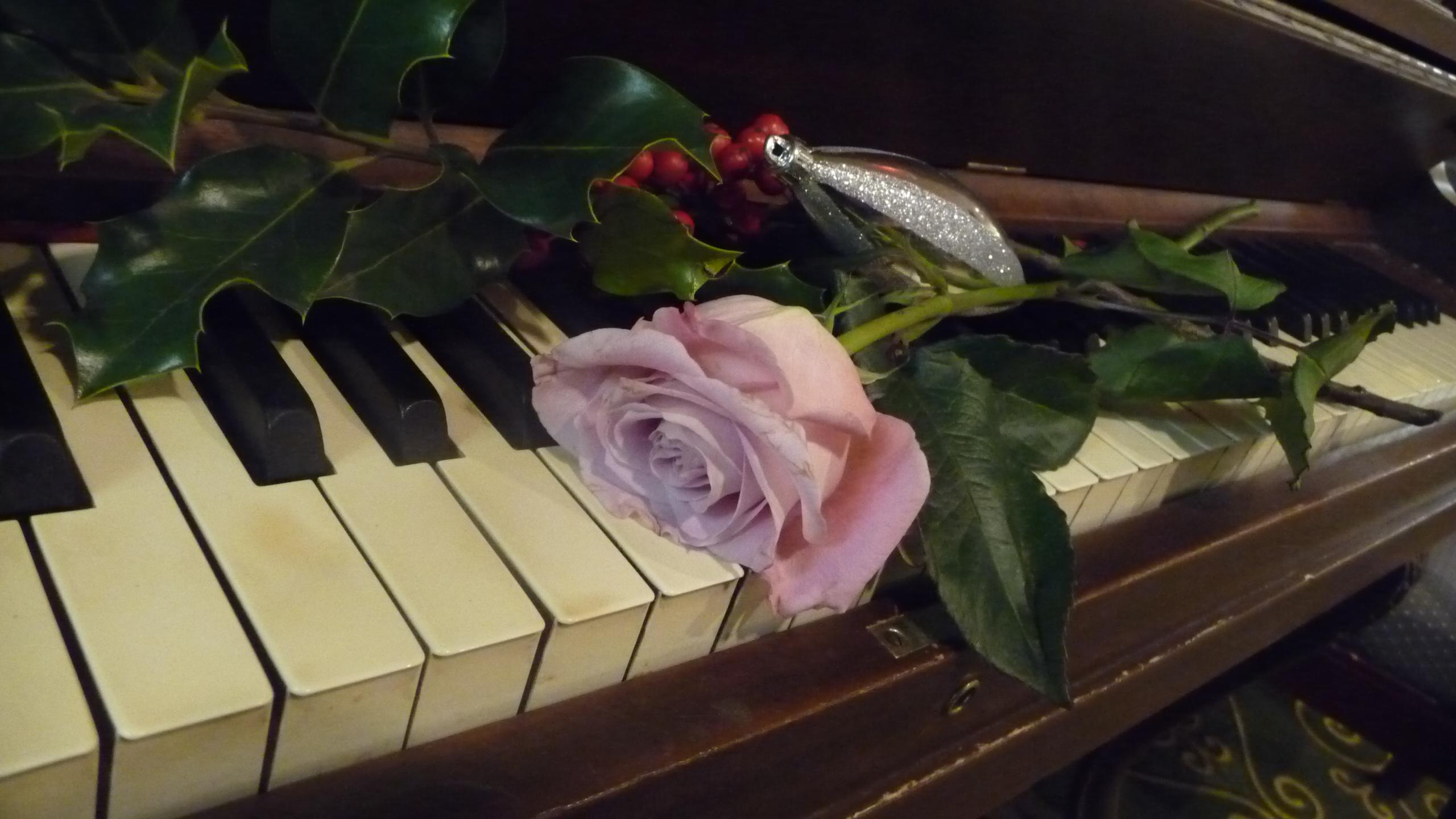 Открытка с клавишами рояля, смешными крысами