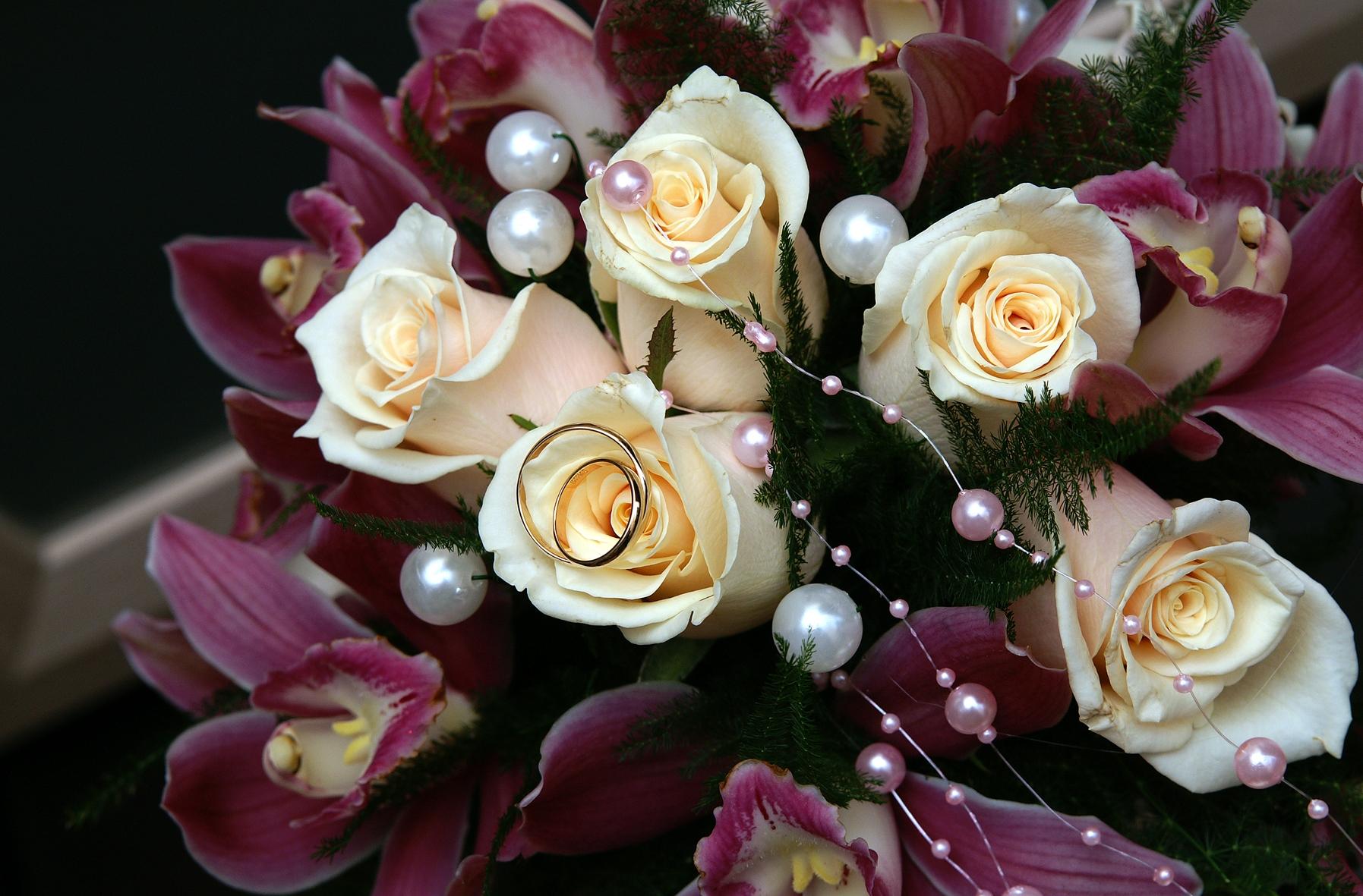 Wallpaper Purple Rose Joy Beads Blossom Pink Happiness Lilies Flora Wedding Ring Petal Retail Land Plant Flowering Floristry