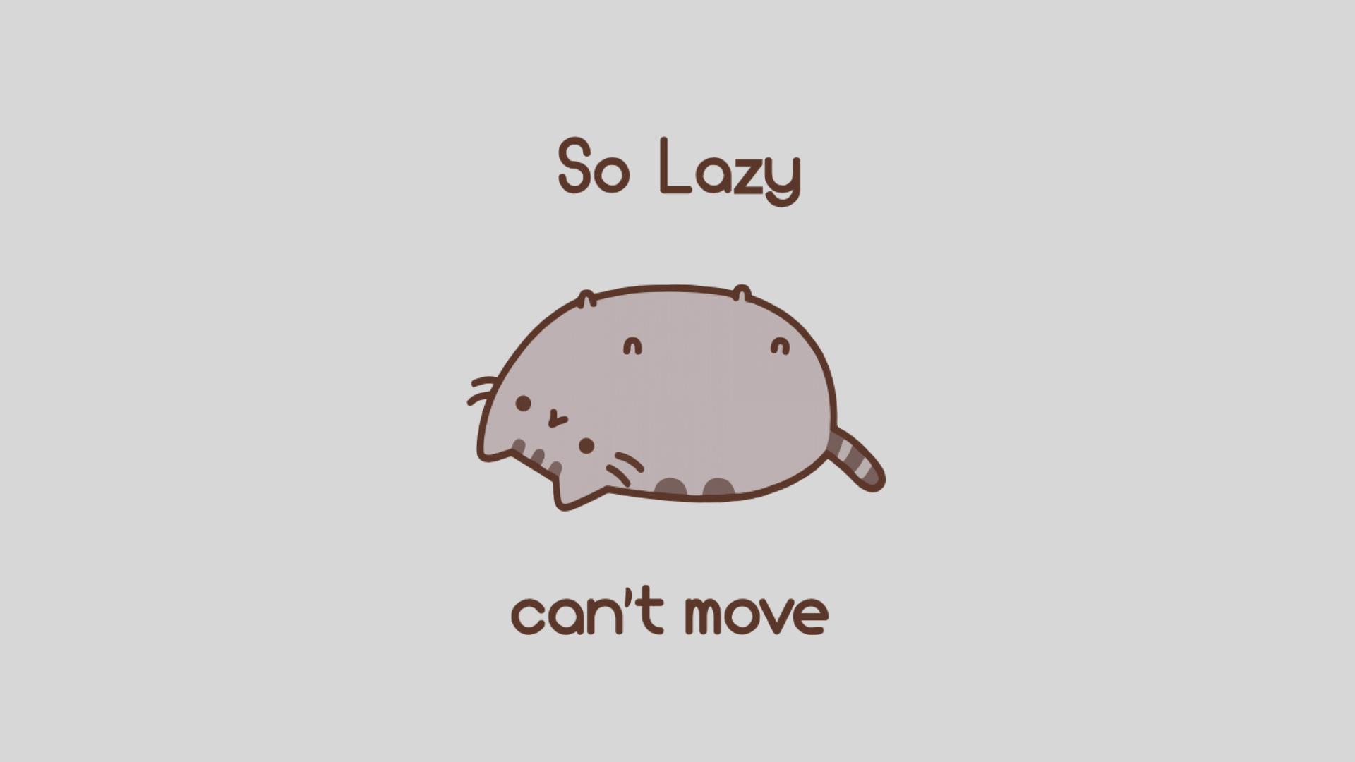 pusheen lazy cat memes