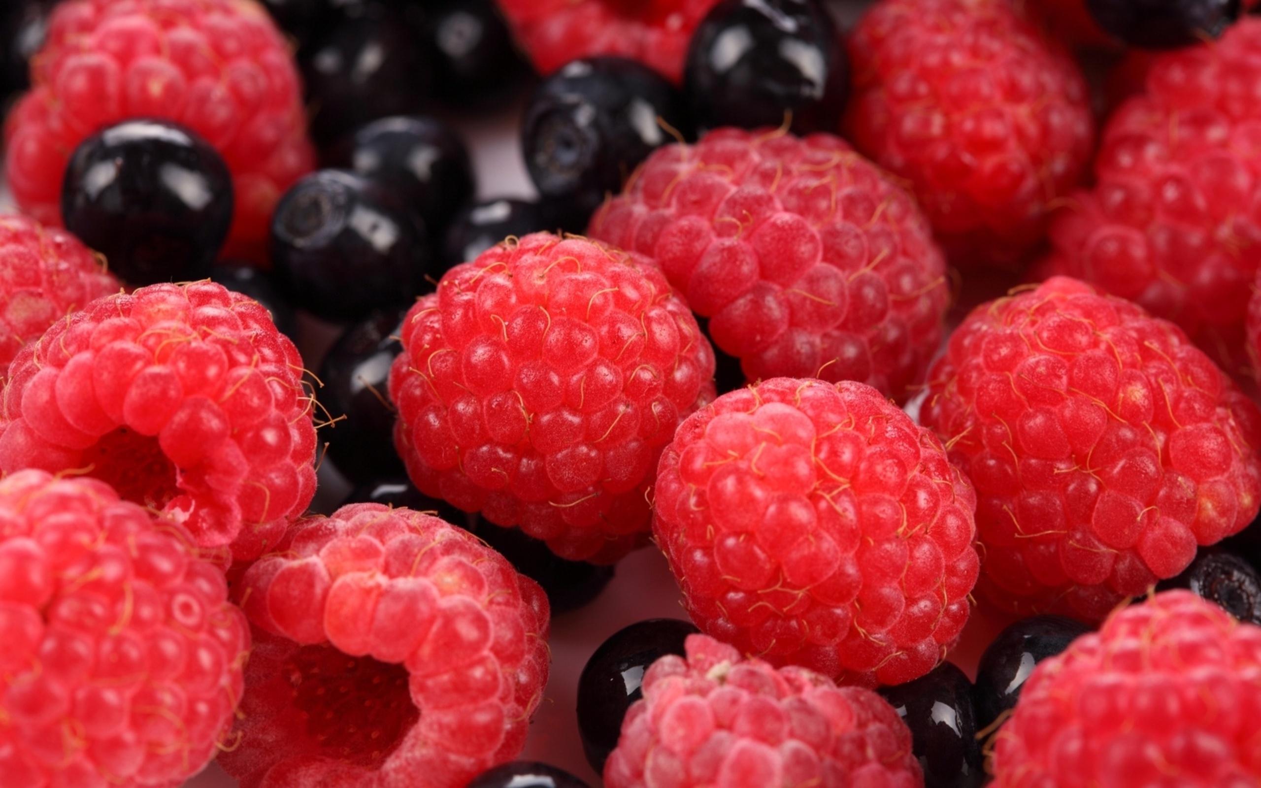 выведено множество картинки на телефон красивые ягоды чаще всего