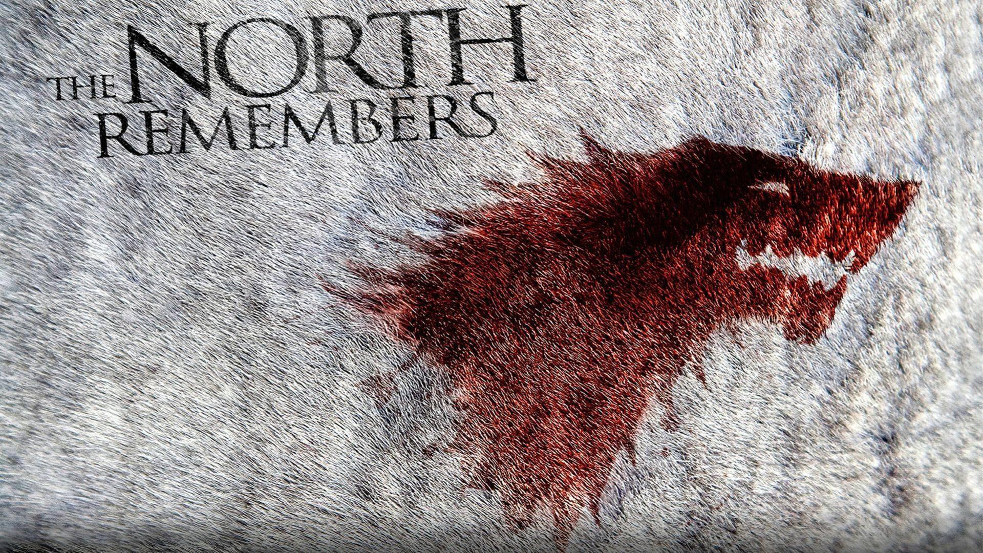 Wallpaper Red Texture Game Of Thrones Direwolves Art Color Organ Album Cover