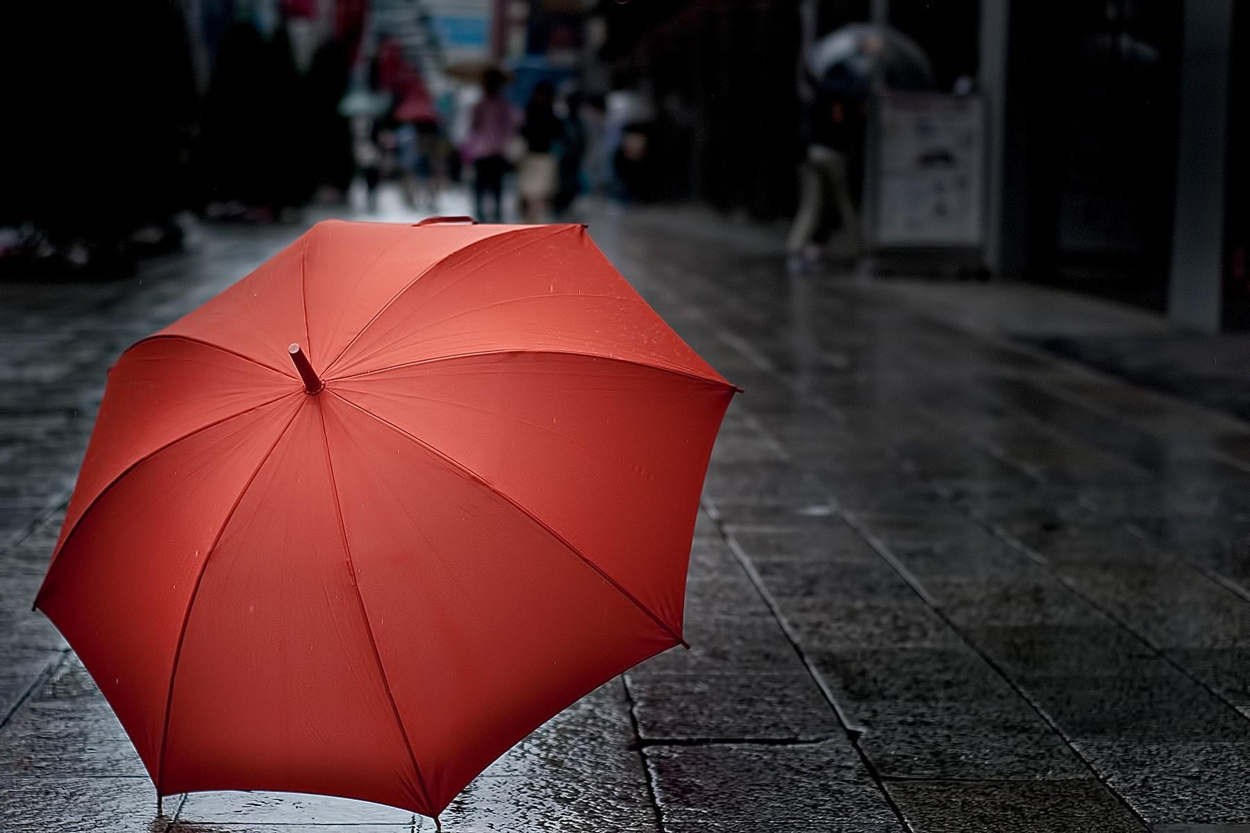 Зонтик красивые фото