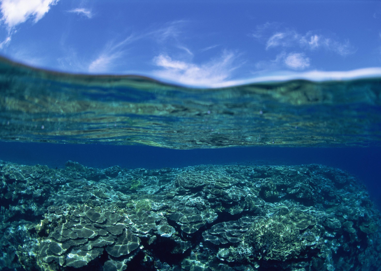 это фото границы воды и неба ничего сложнее