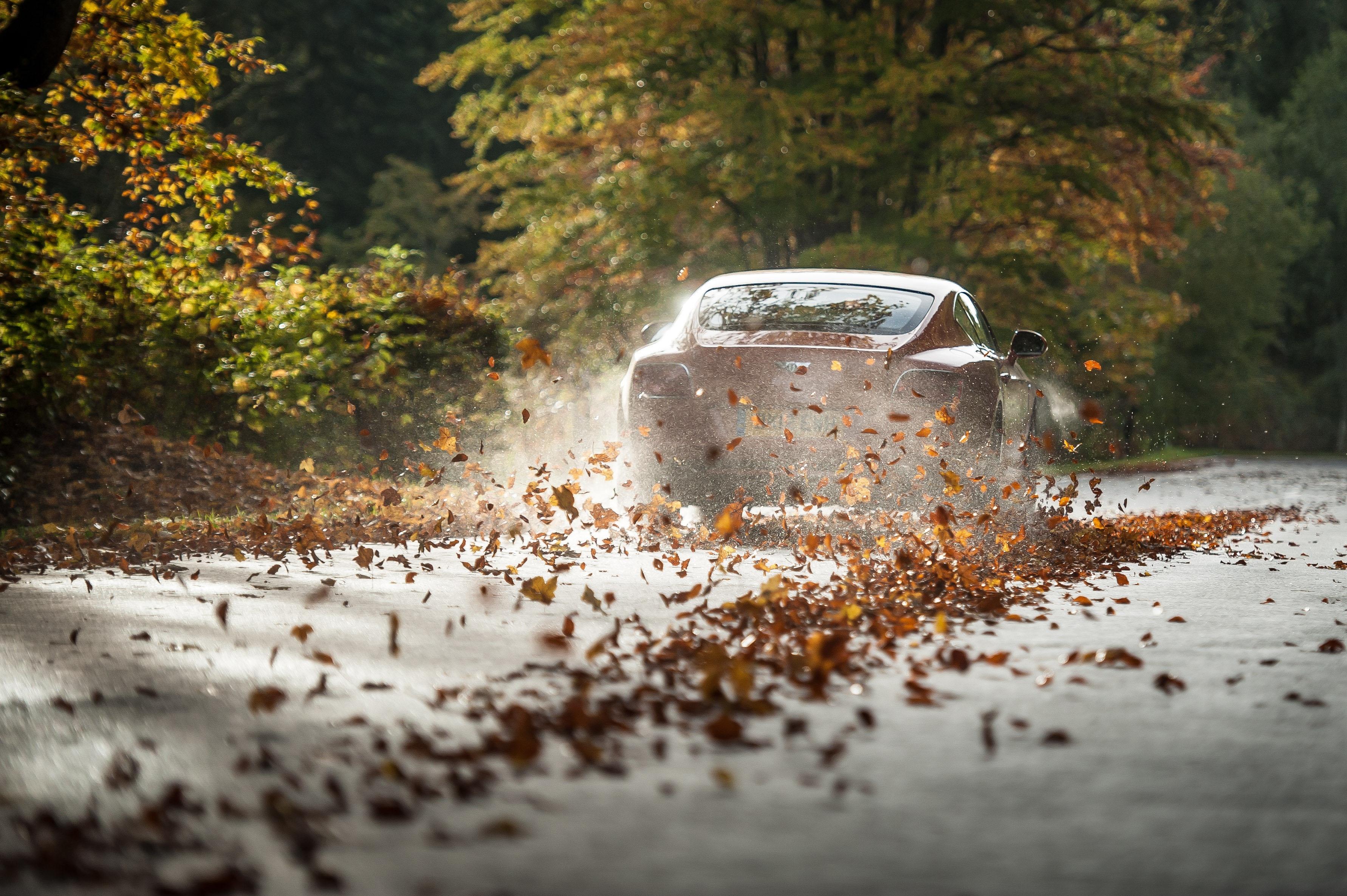 Самые красивые фотографии автомобилей под дождем