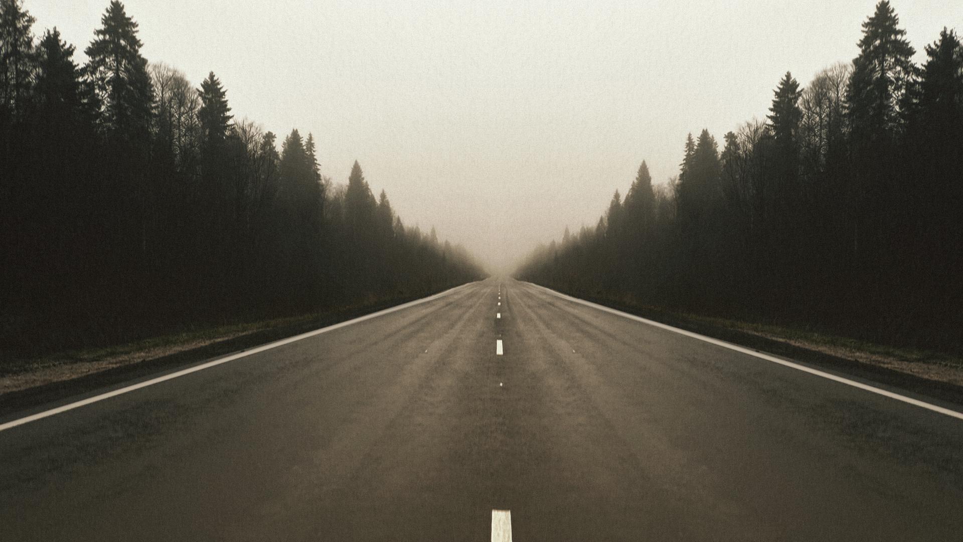 Wallpaper : road, forest, fall, mist, asphalt, trees, landscape