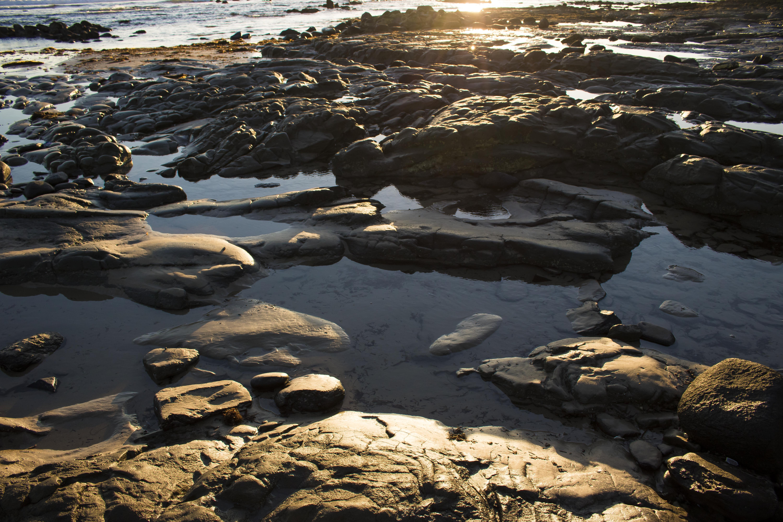 Rock Rocks Pool Pools Beach Water Sand Morning Sun Nature Stanley Tasmania Australia