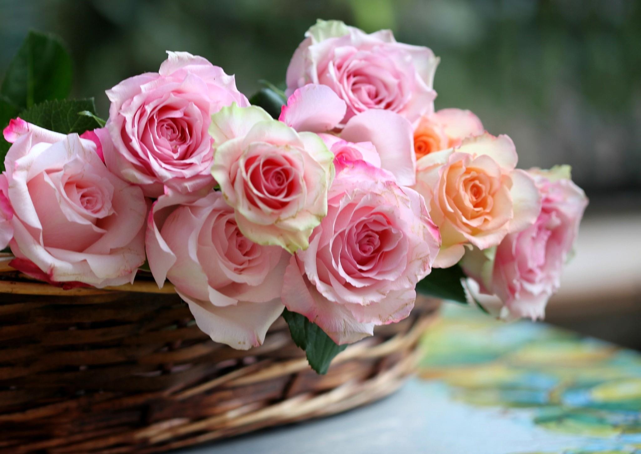 букет цветов в картинках роз на рабочем столе отеле очень большая