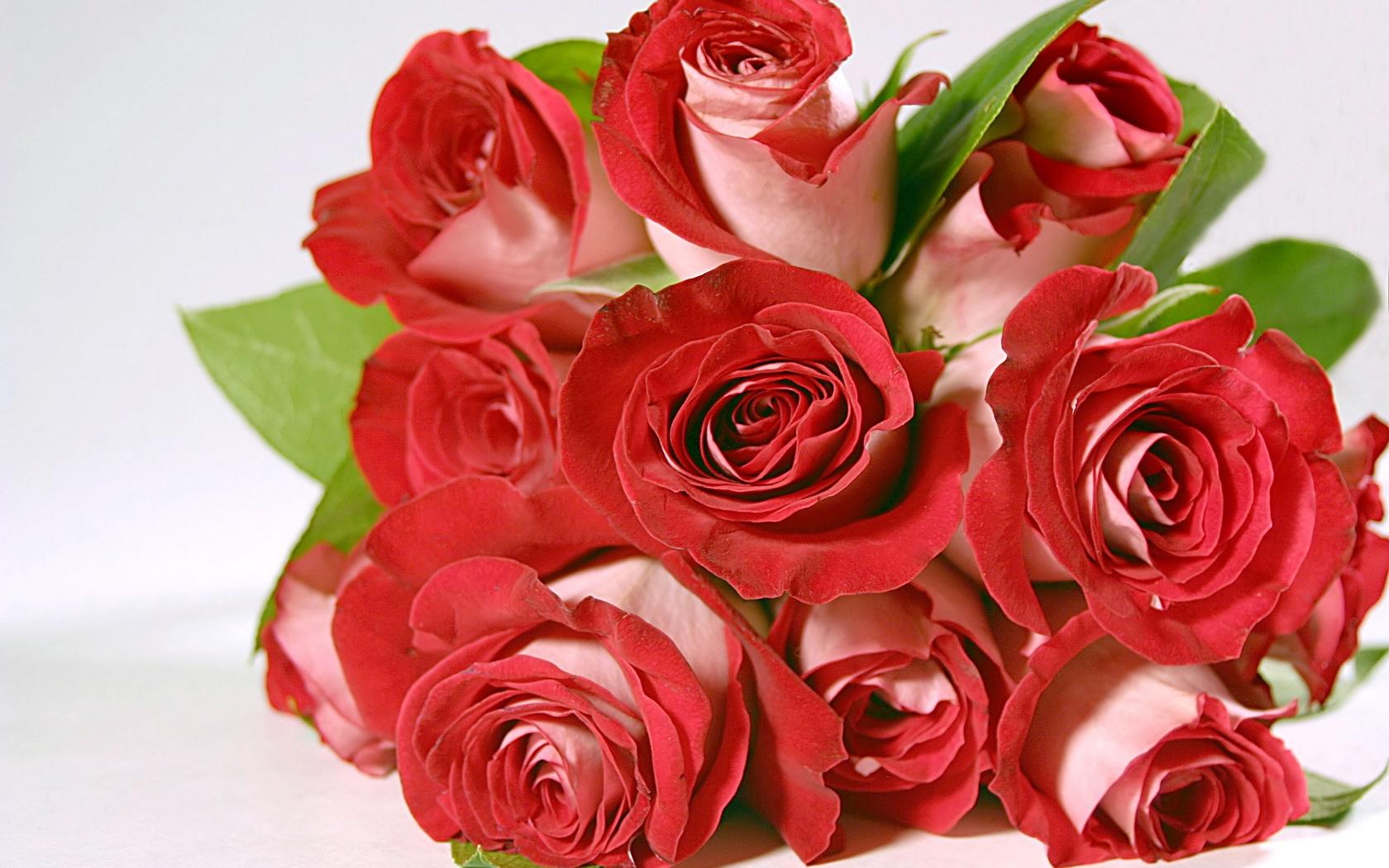 Букеты роз для поздравления картинки 918