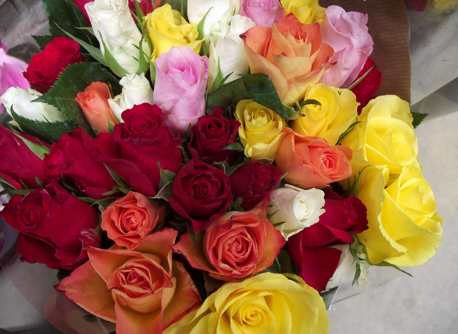 днем с рождения фото цветов шикарных