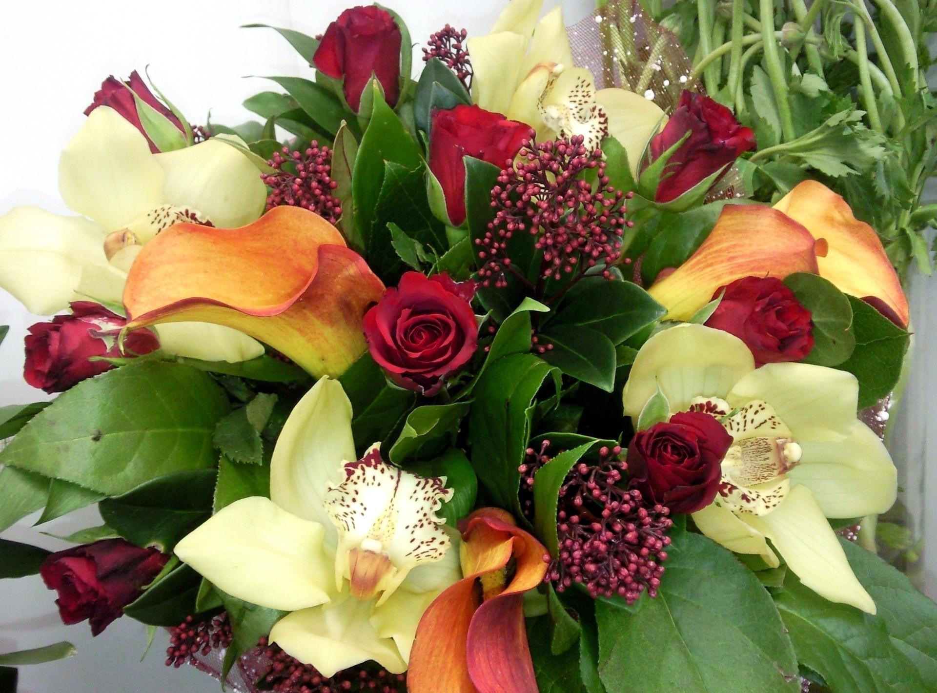 Роскошные цветы картинки