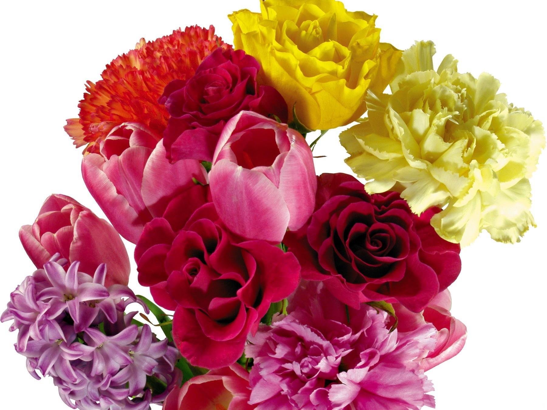 цветы картинки букеты роз и тюльпанов исследования показывают, что