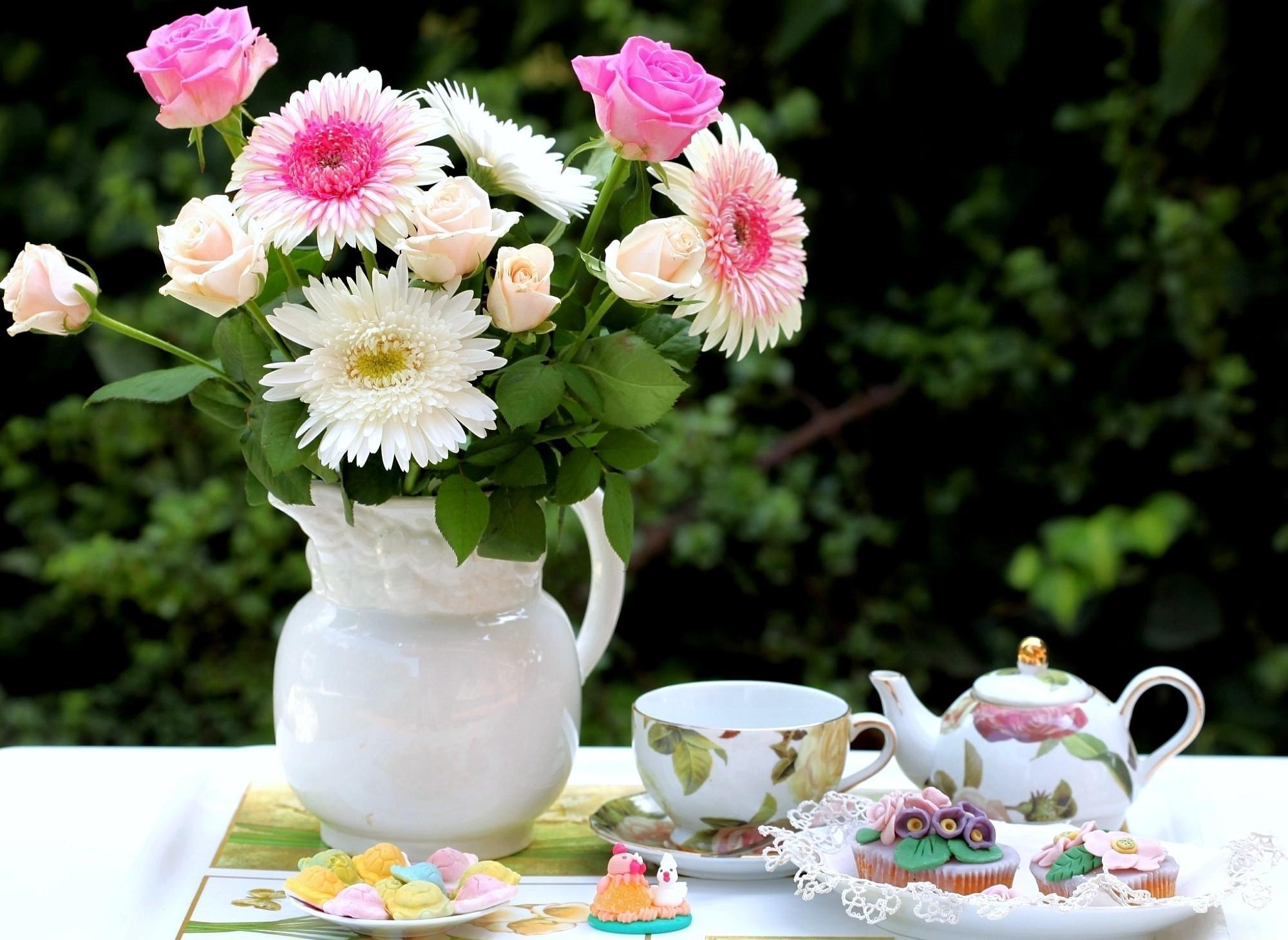предпочел, красивые фото цветов доброго утра москве их