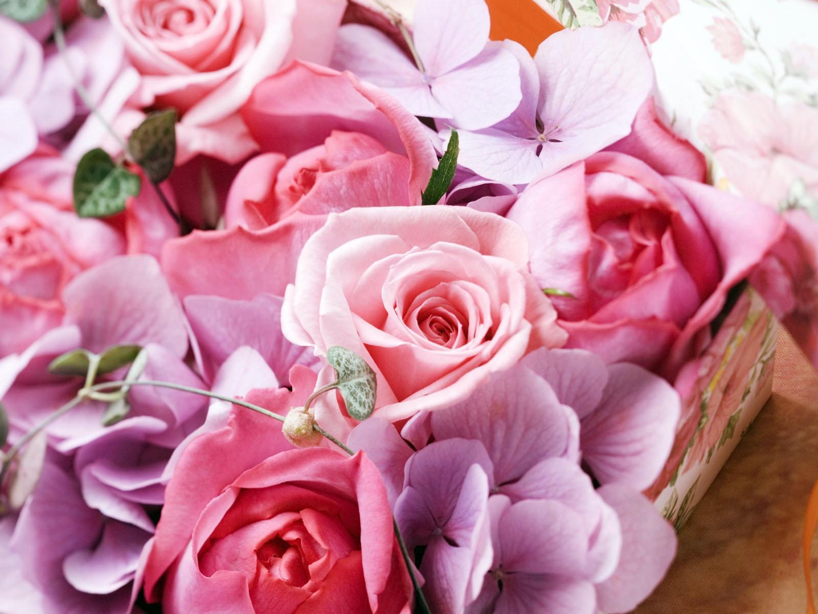 любит рассказывать красивые цветы картинки фото открытки плакат