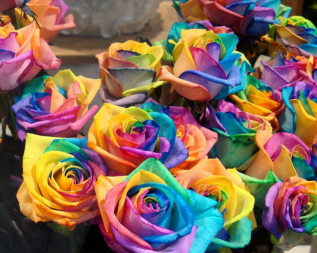 Поздравление с разными цветами 9