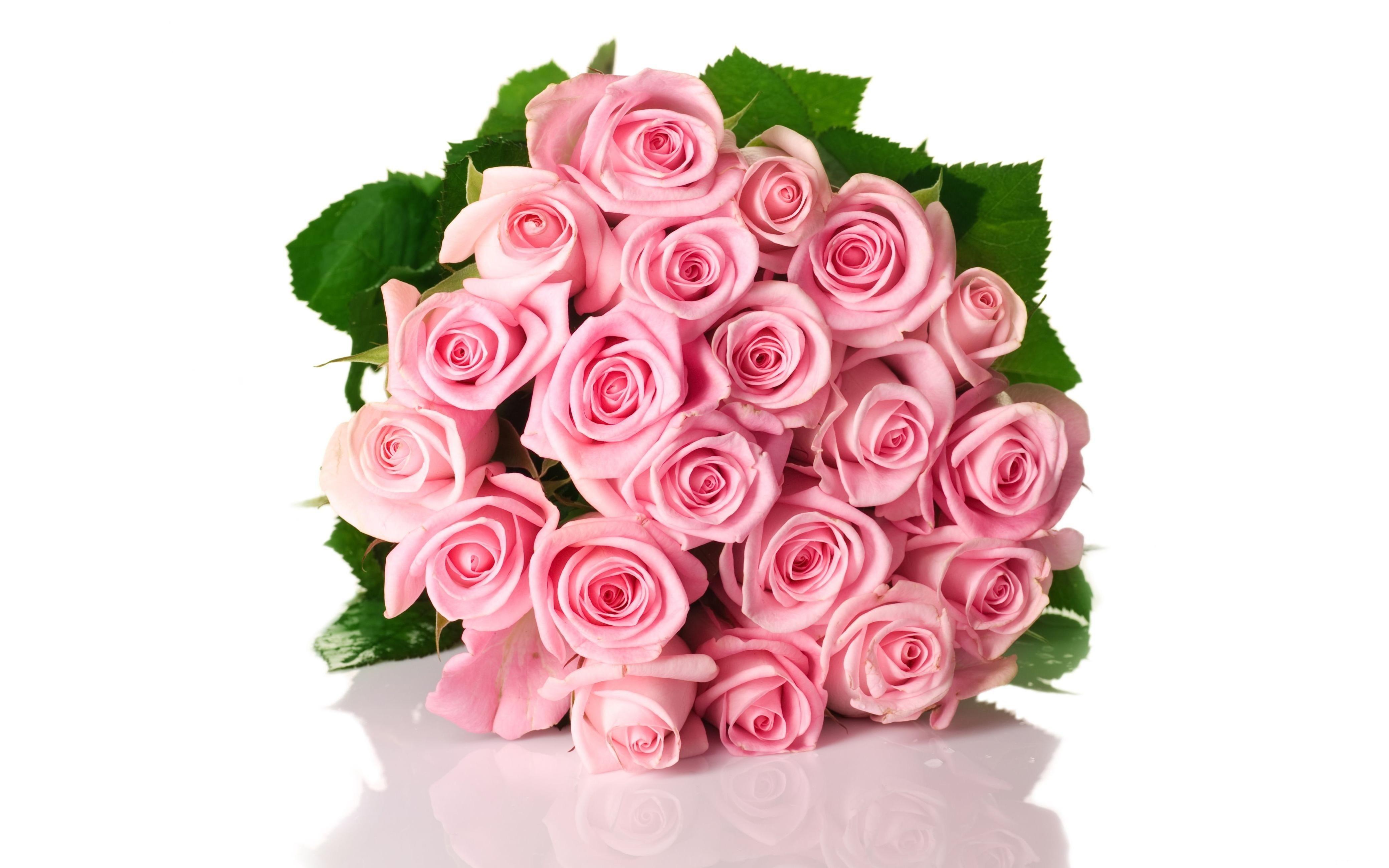 Открытки с розами на день рождения на белом фоне, черных роз открытки