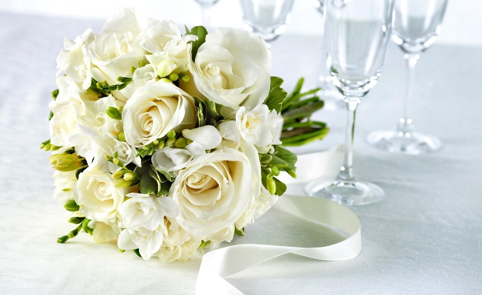 Wallpaper Roses Freesia Flowers Flower White Glasses Tape