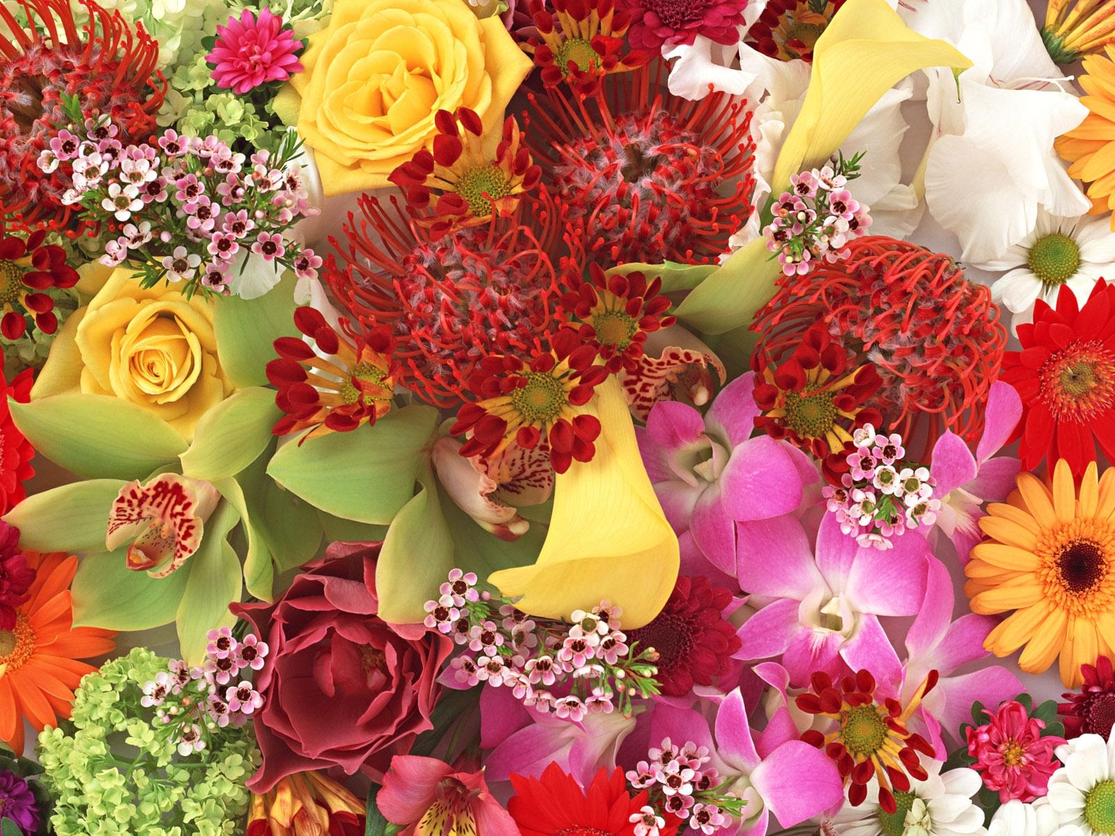 Картинки больших и красивых букетов цветов