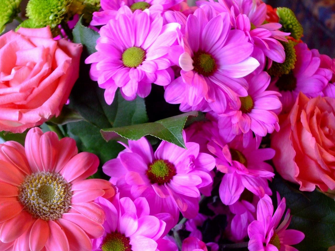 Фото цветов большие картинки