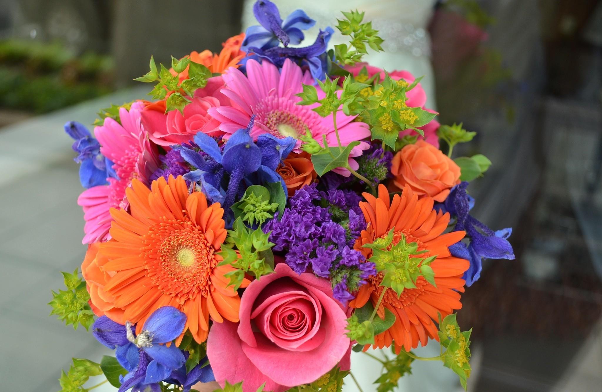 Wallpaper : roses, gerbera, flowers, bouquet, colorful, combination ...