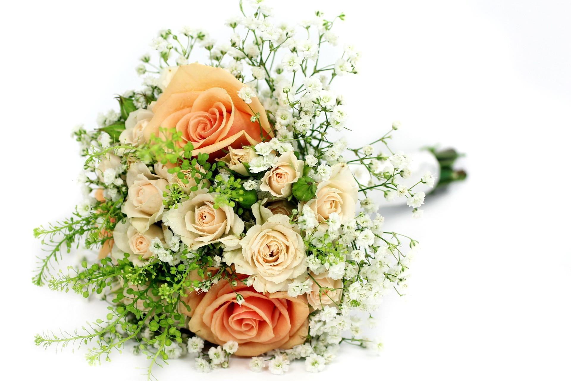 Открытки цветы розы с гипсофилами, аниме приколы фейри