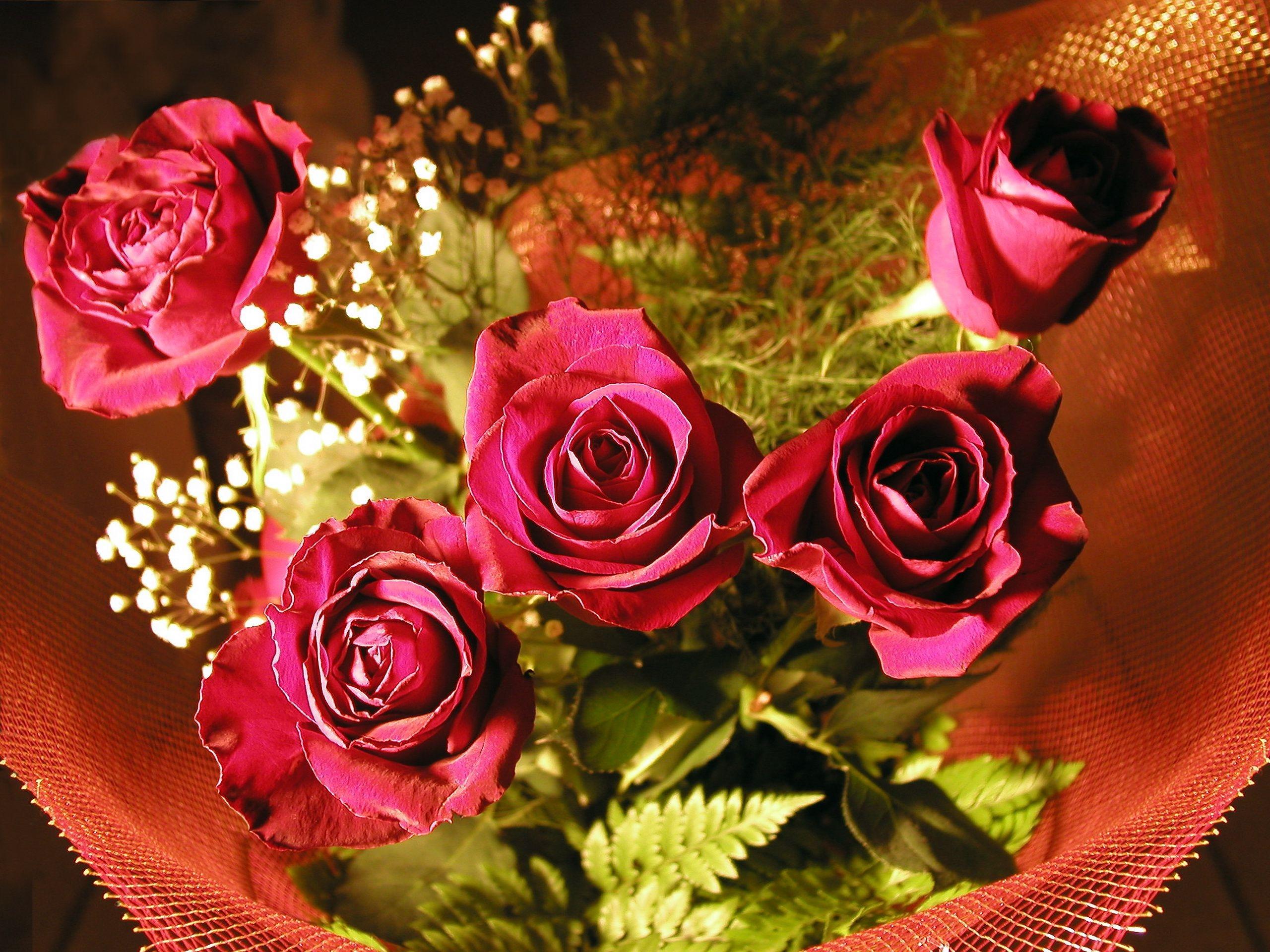 Красивые сверкающие розы фото