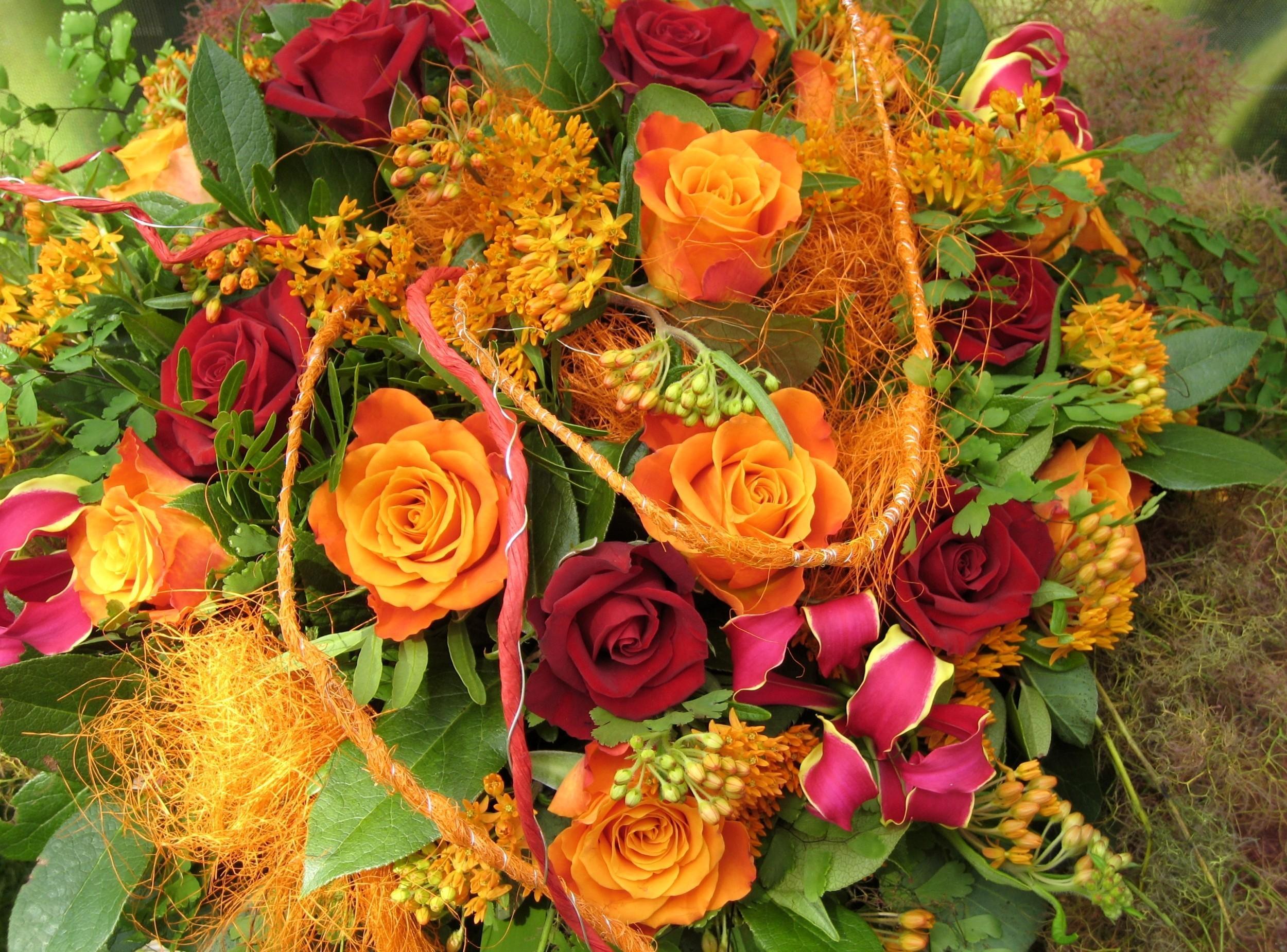 осенние фото с цветами традиционным