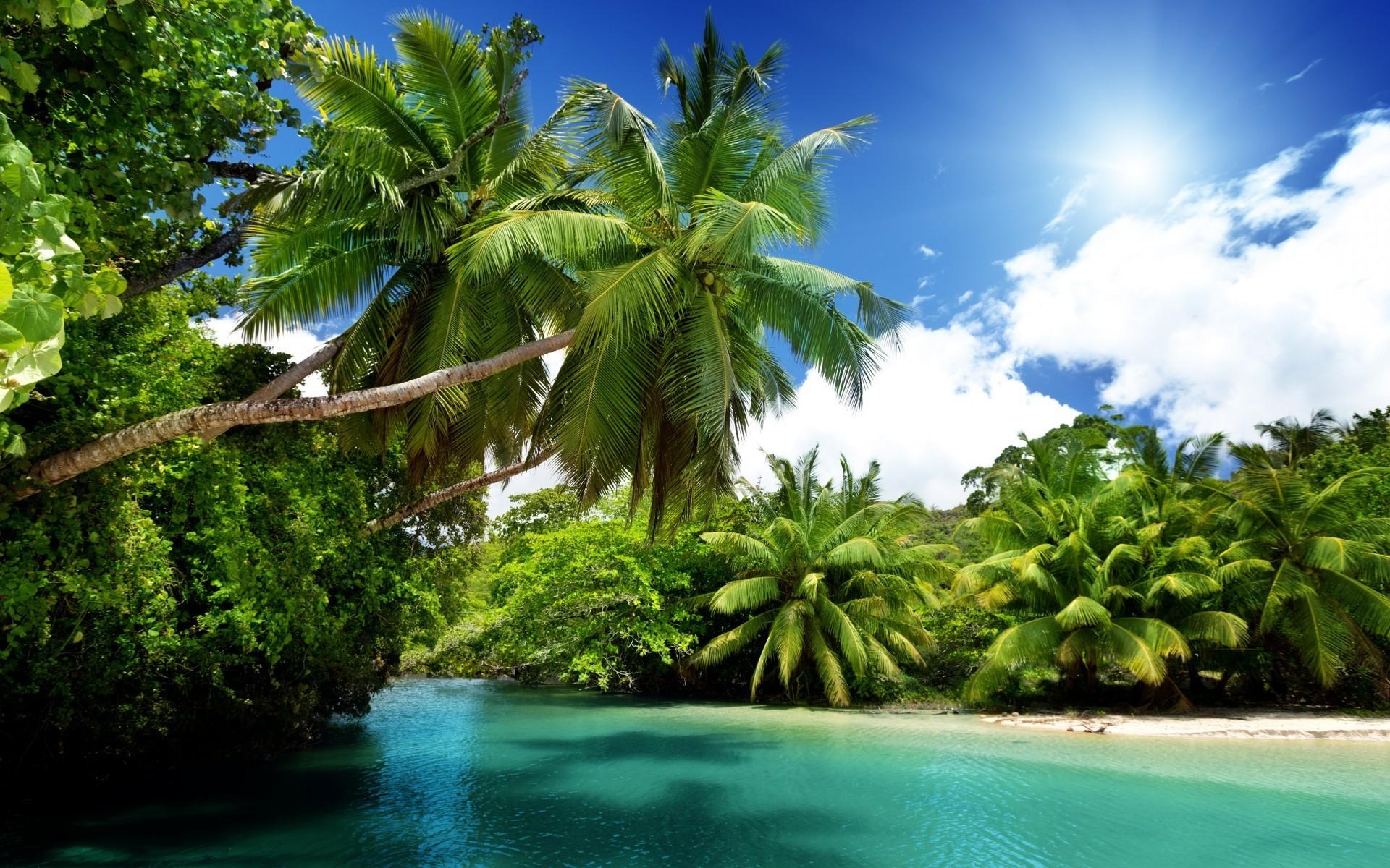Hintergrundbilder Meer Bucht Sand Strand Palmen