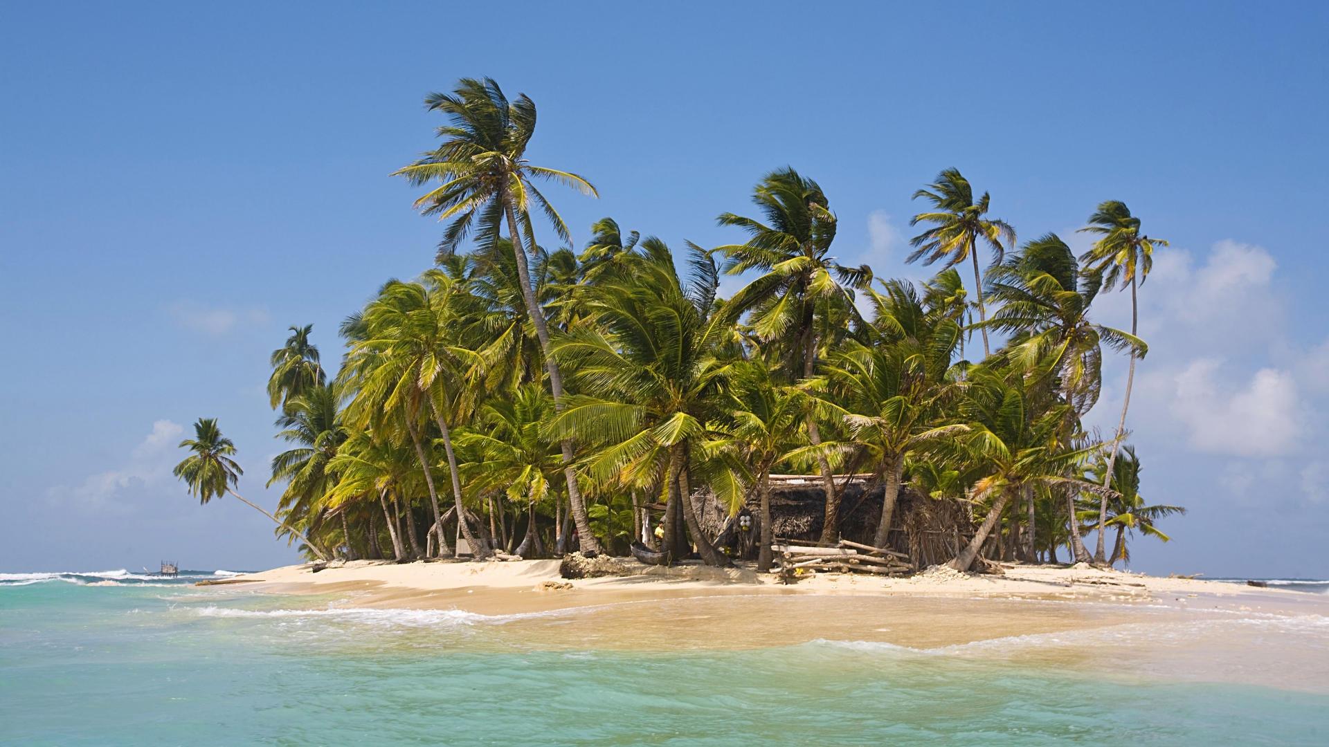 свойства картинки остров с пальмой и хижиной эта создана