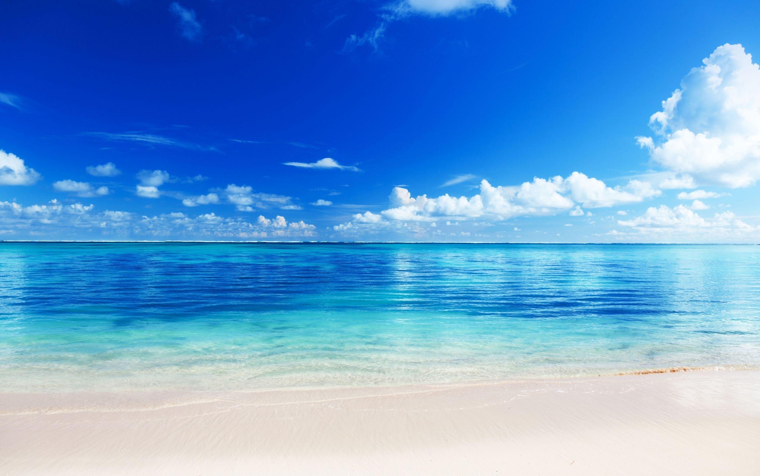 wallpaper : sea, beach, horizon, sand, tropics 2555x1600 - wallup
