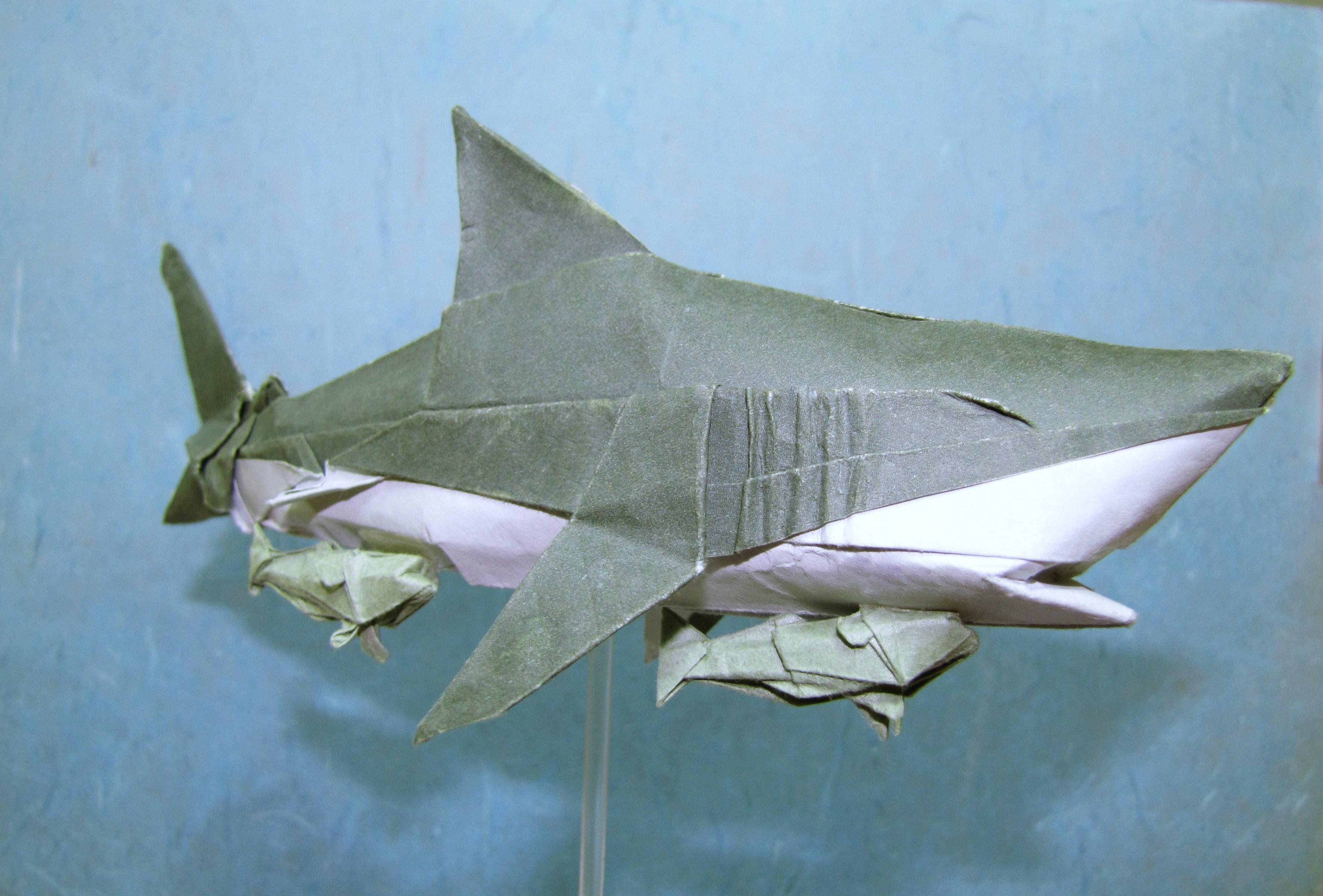 Wallpaper Sea Fish Shark Origami Malaysia Greatwhiteshark