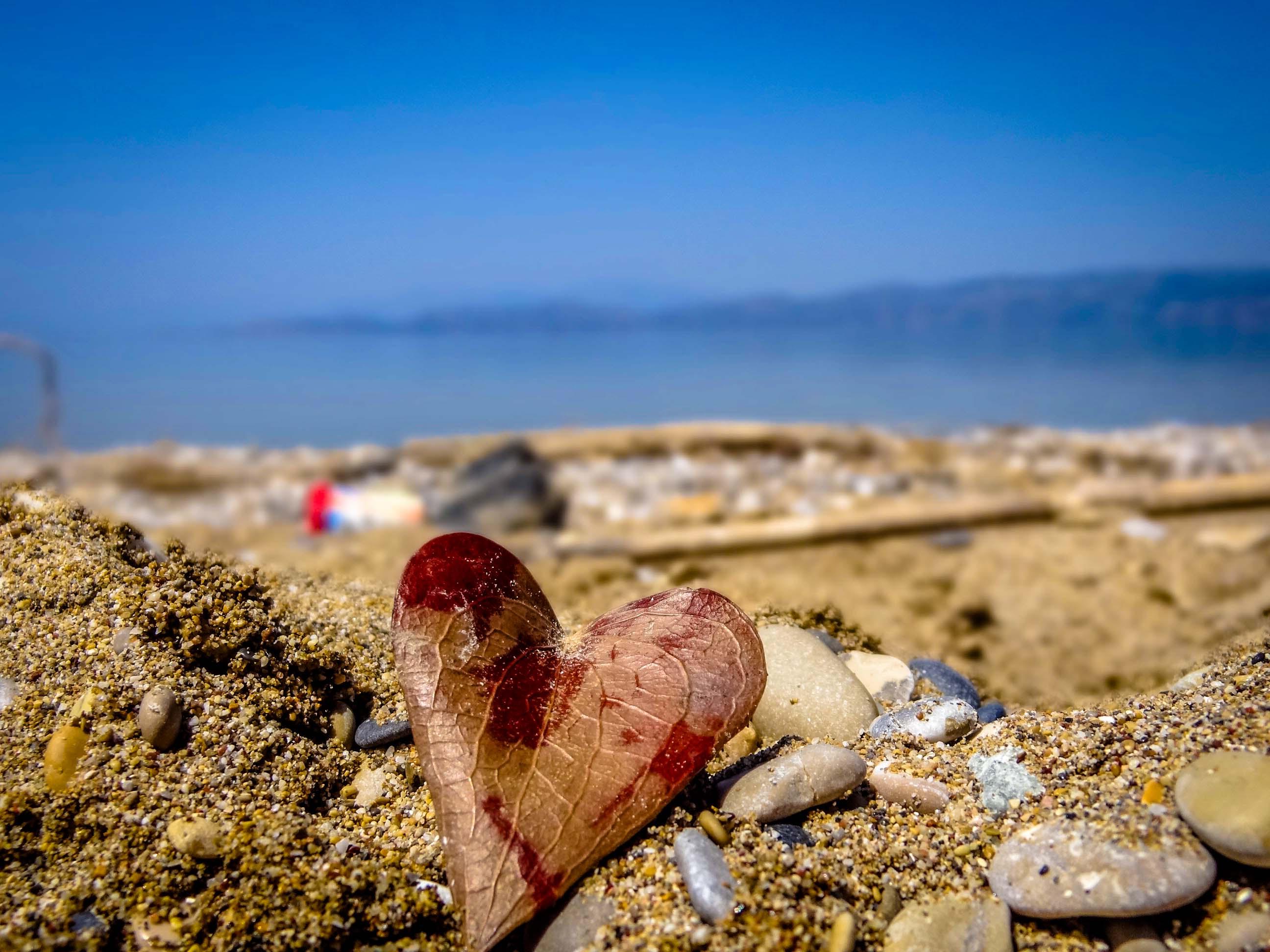 сердце в море фото разделяет рощу