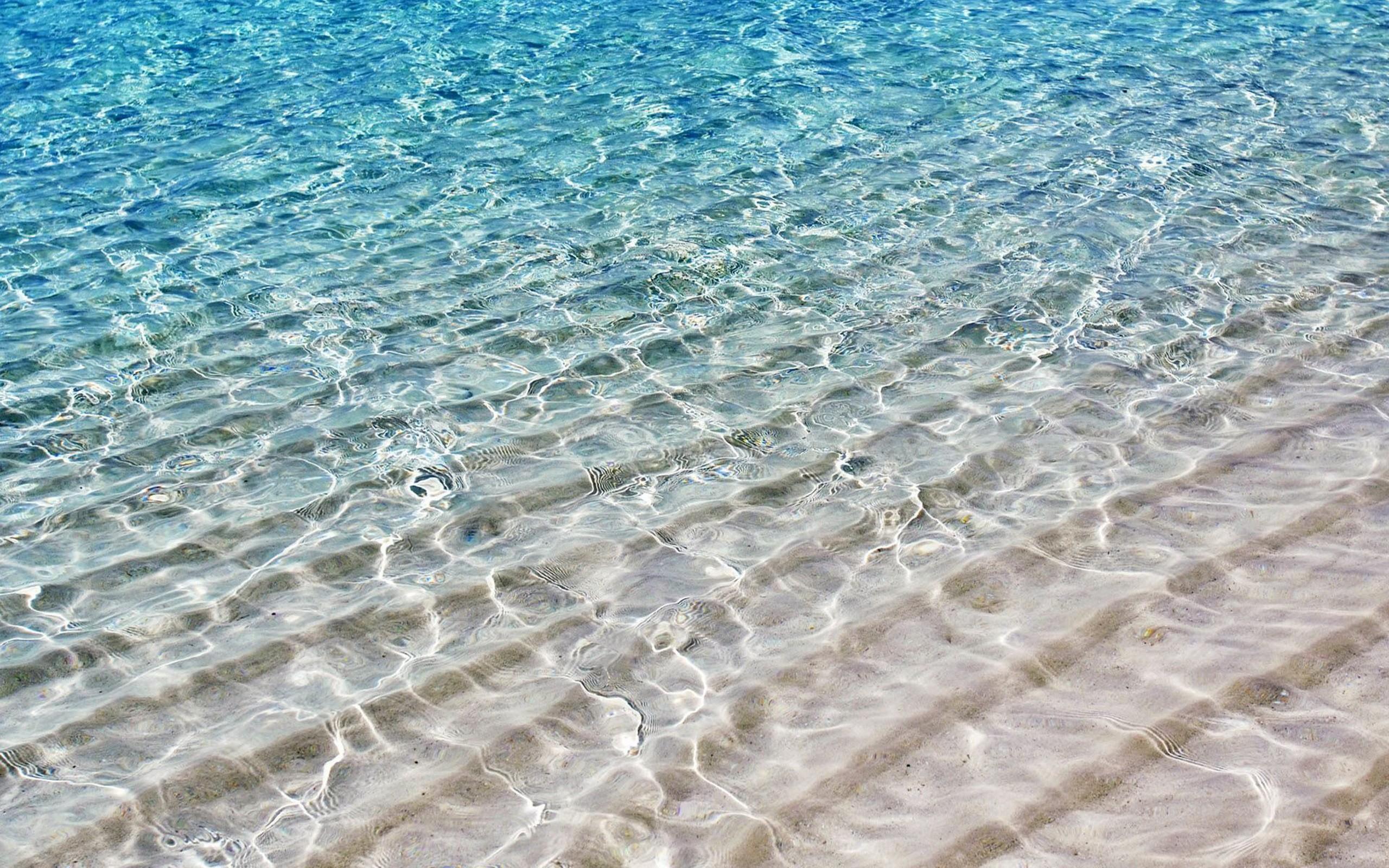 такой картинки пляжа воды становитесь краснее омара