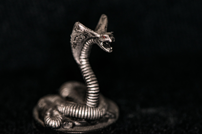 Hình nền : Con rắn, đen và trắng, Loài bò sát tỉa, con rắn, Bò sát, Chụp macro, Đóng lên, Đơn sắc, bóng tối, Nhiếp ảnh đơn sắc, bạc, đồ kim hoàn, ...
