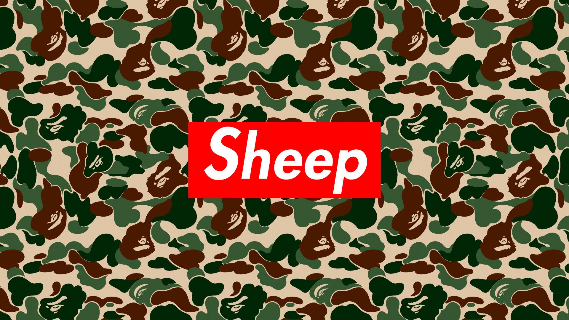 Wallpaper Sheep Humor 1920x1080