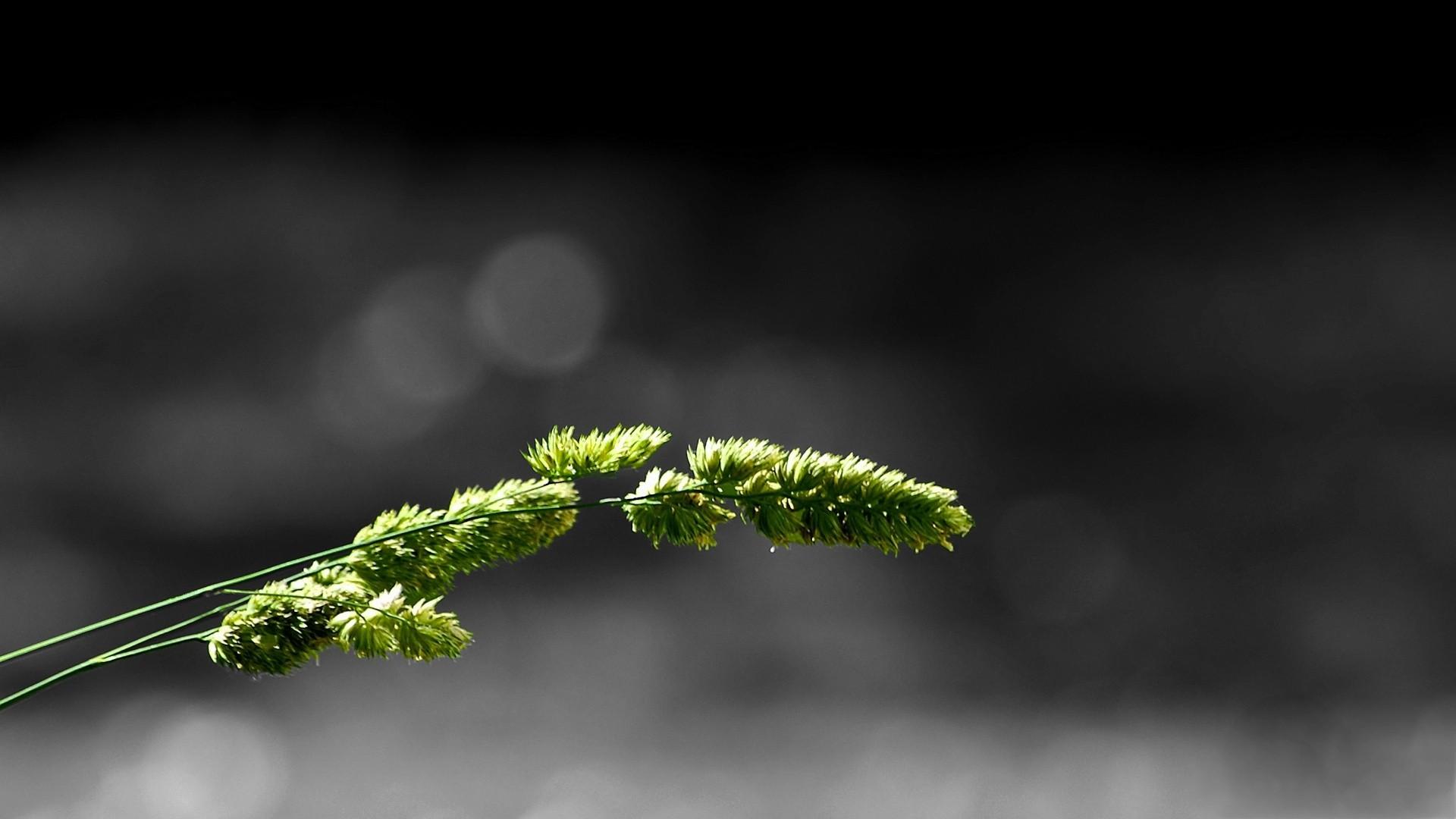 картинки минимализма фото четкие линии, стильный