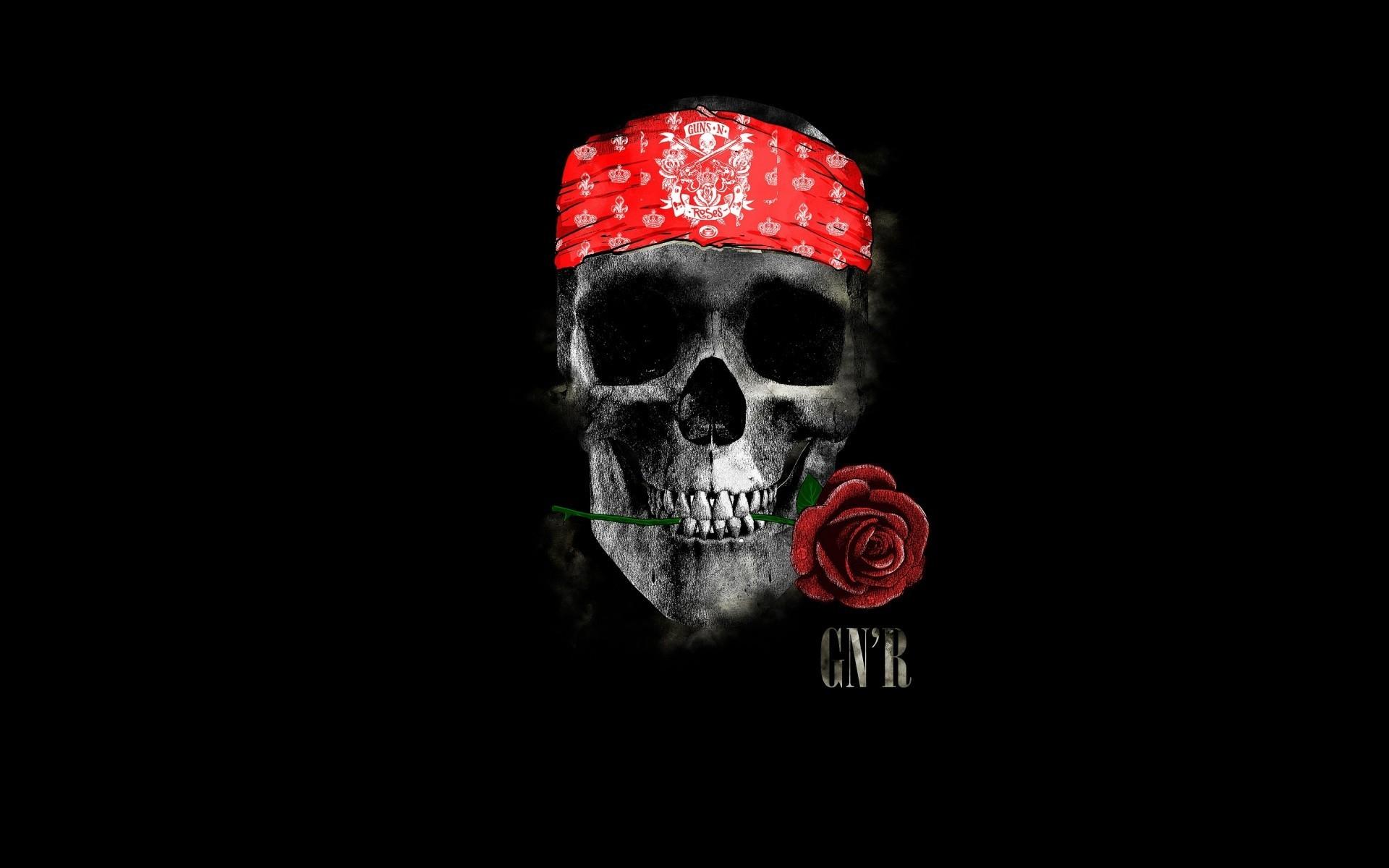 Wallpaper Skull Guns N Roses Rock And Roll Bone